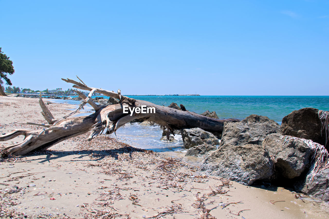 sea, horizon over water, water, horizon, sky, scenics - nature, land, beach, tranquility, tranquil scene, beauty in nature, nature, blue, day, driftwood, rock, no people, clear sky, non-urban scene, outdoors, dead plant