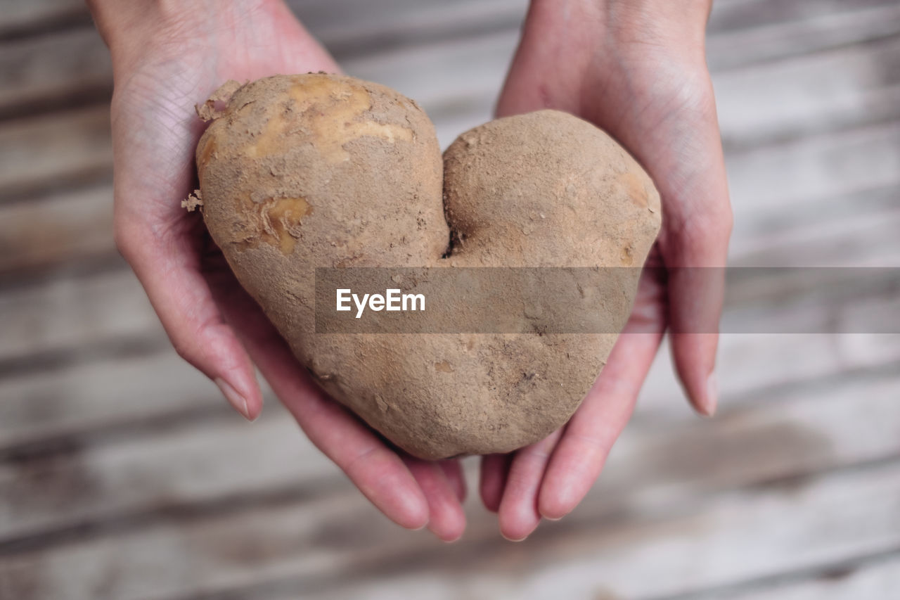 human hand, hand, heart shape, one person, holding, human body part, real people, food, focus on foreground, food and drink, cookie, baked, close-up, creativity, shape, lifestyles, indoors, love, high angle view, positive emotion, finger, hands cupped