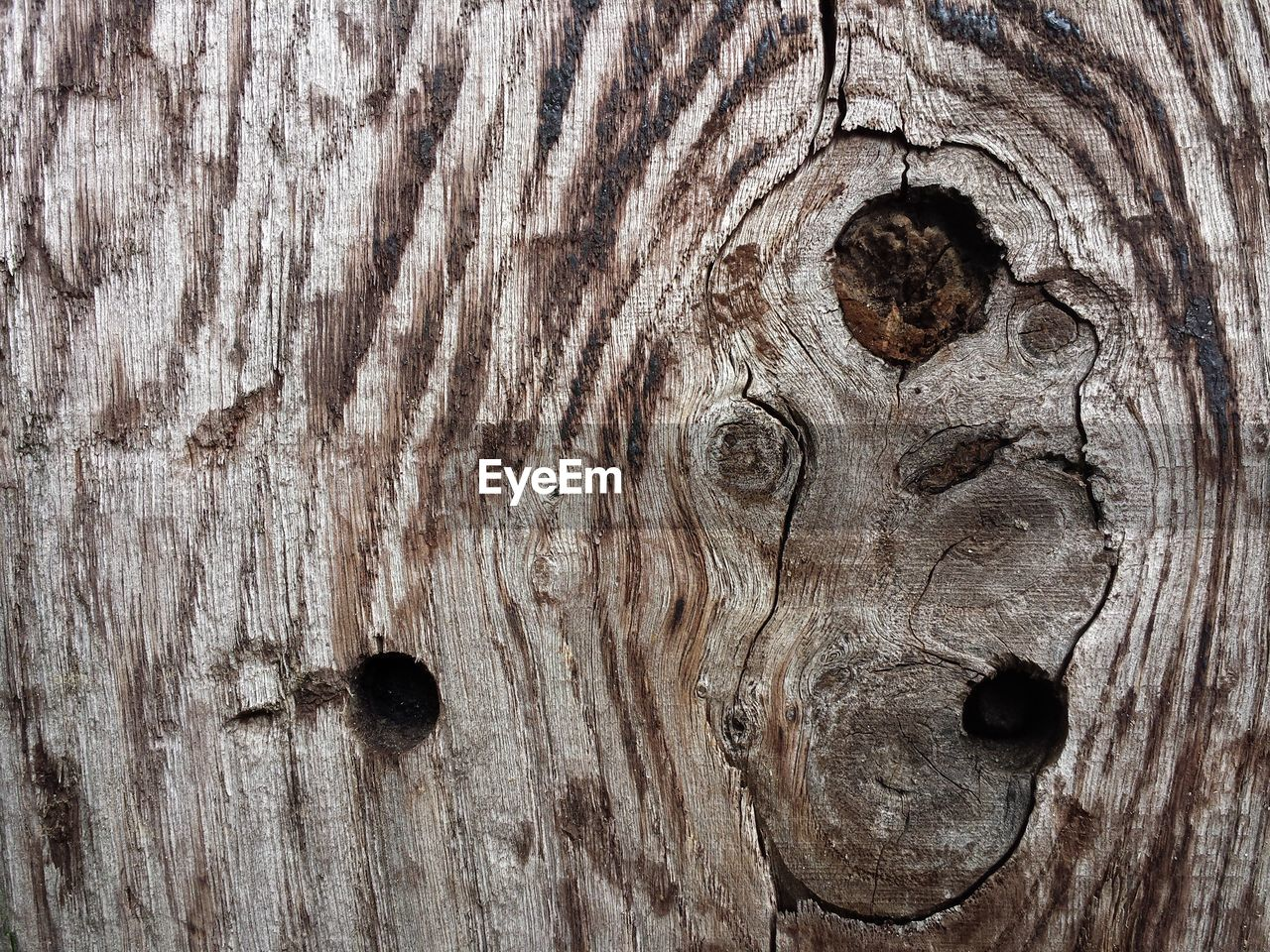 backgrounds, textured, wood - material, full frame, close-up, pattern, wood, no people, rough, knotted wood, brown, tree, wood grain, natural pattern, tree trunk, weathered, day, plank, hole, trunk, outdoors, textured effect