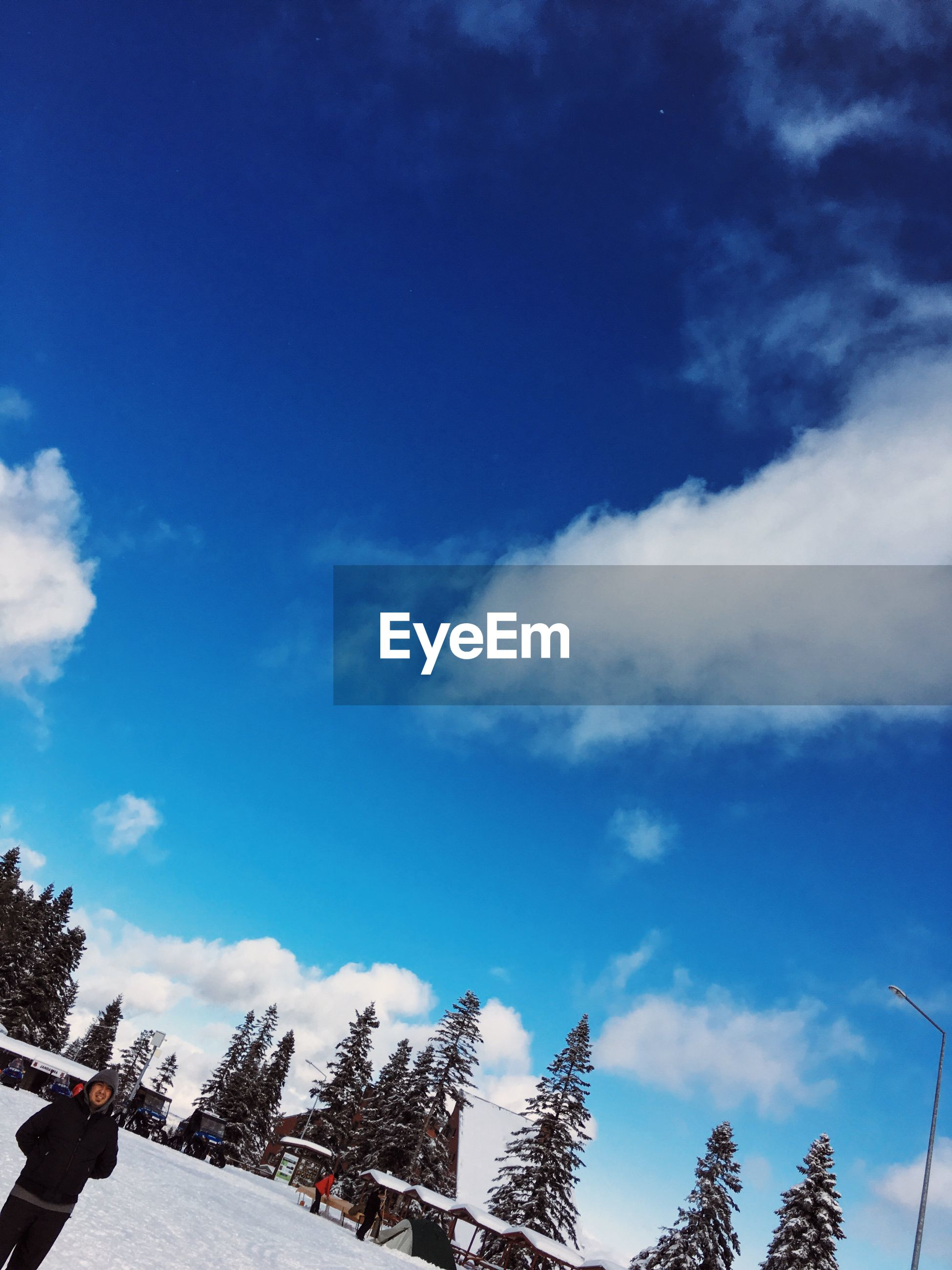 sky, low angle view, blue, cloud - sky, nature, cloud, beauty in nature, tranquility, tree, cloudy, scenics, day, tranquil scene, outdoors, snow, white color, high section, weather, growth, cold temperature