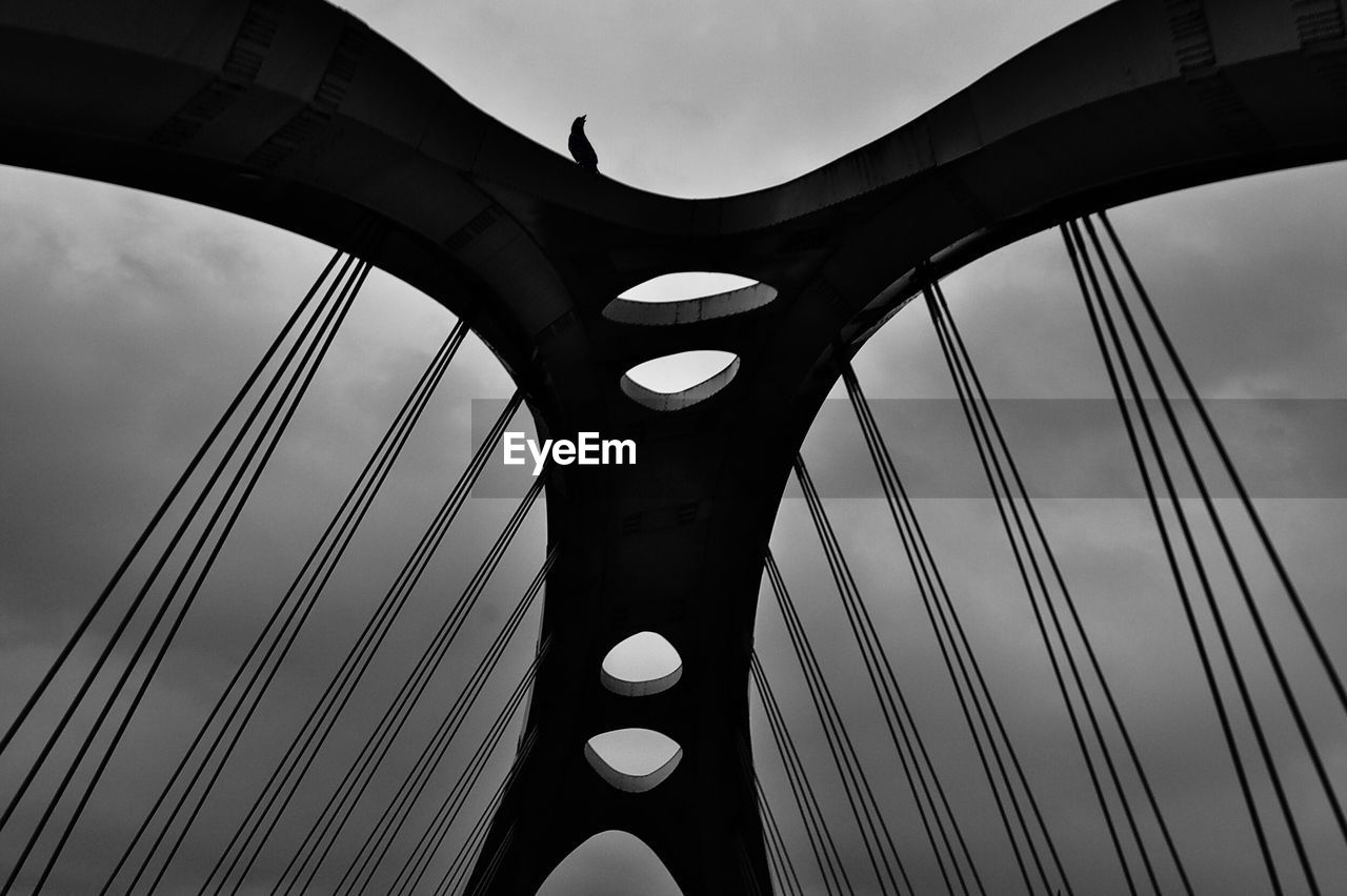 Low Angle View Of Bird Perching On Suspension Bridge Against Sky