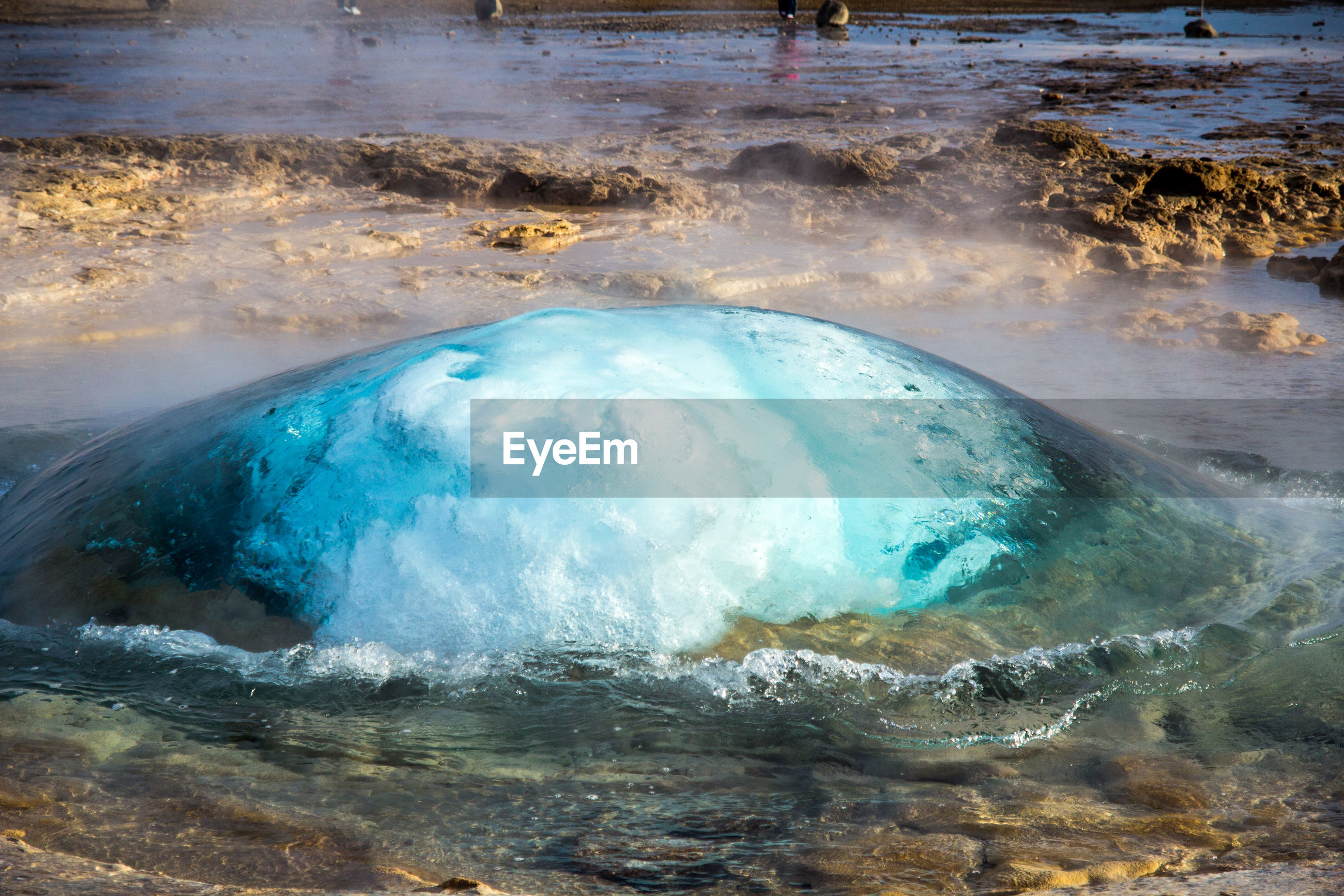 High angle view of geyser at forest