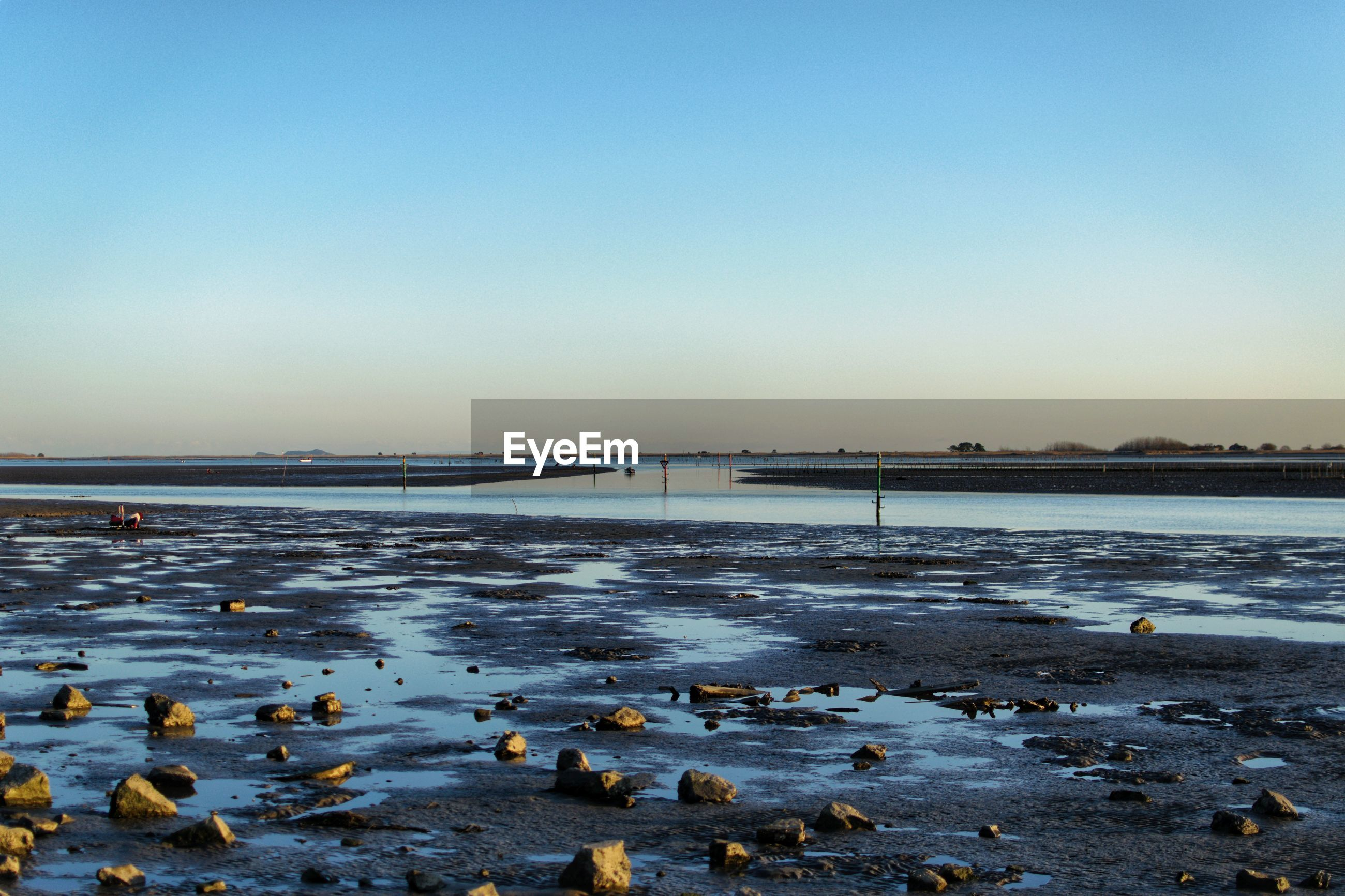 Scenic view of sea and mudflat against clear sky during winter