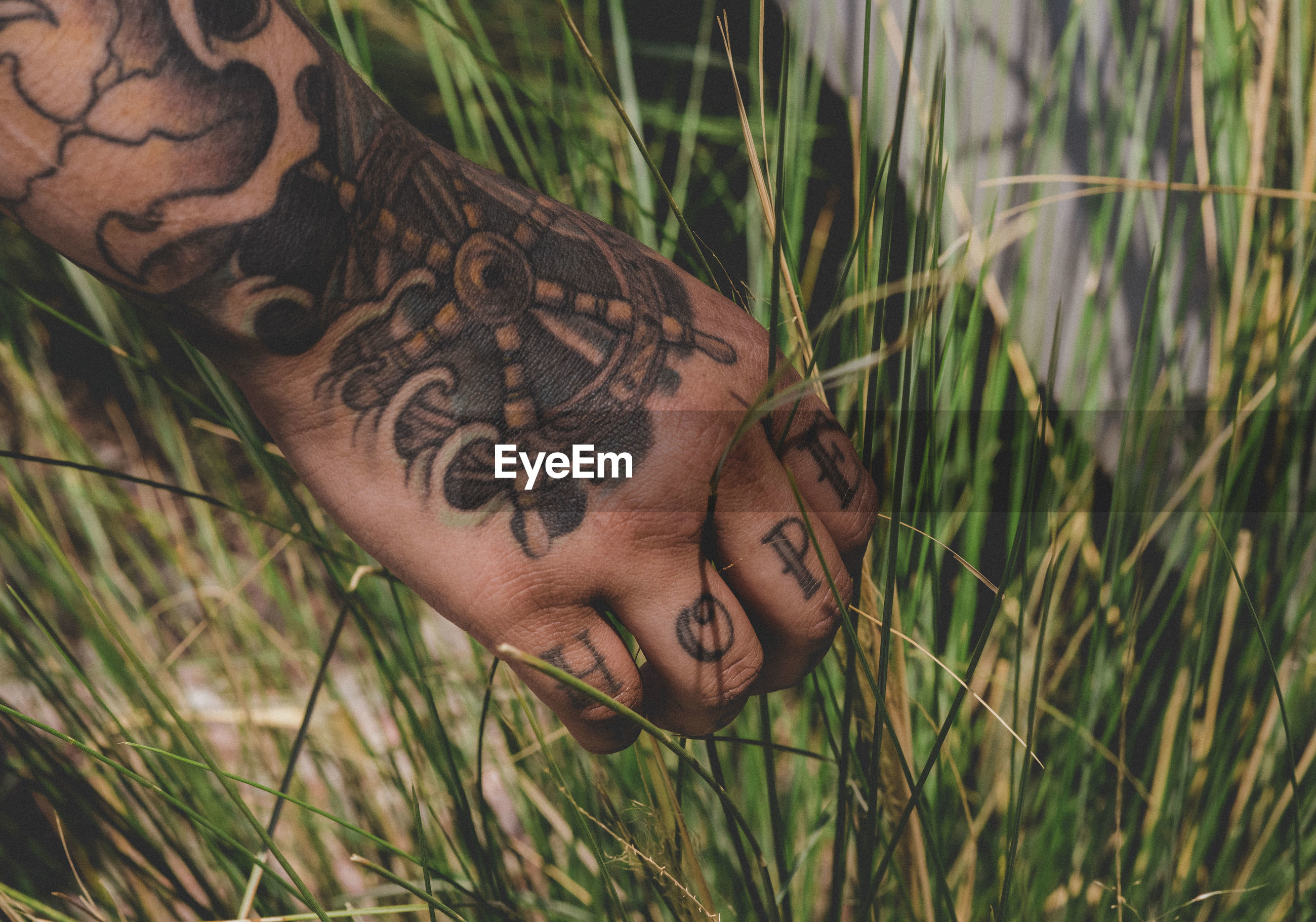Cropped image of tattoo hand on grass