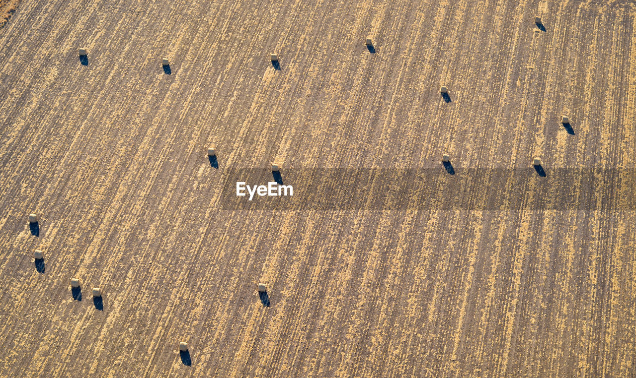 backgrounds, pattern, full frame, no people, day, nature, sunlight, high angle view, land, aerial view, outdoors, brown, agriculture, sand, in a row, textured, landscape, beauty in nature, wood - material, field