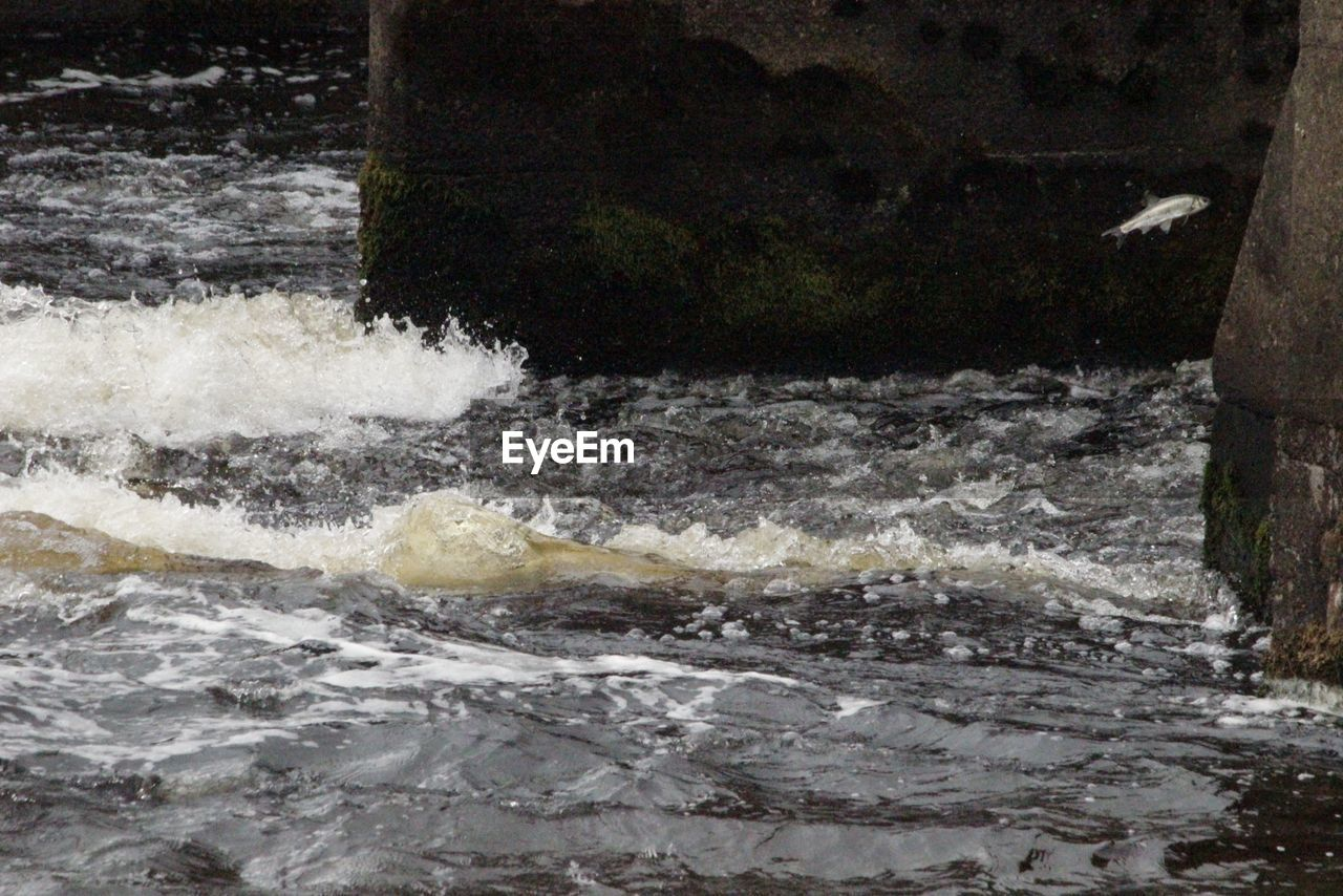 motion, water, no people, waterfront, outdoors, day, nature, beauty in nature, close-up