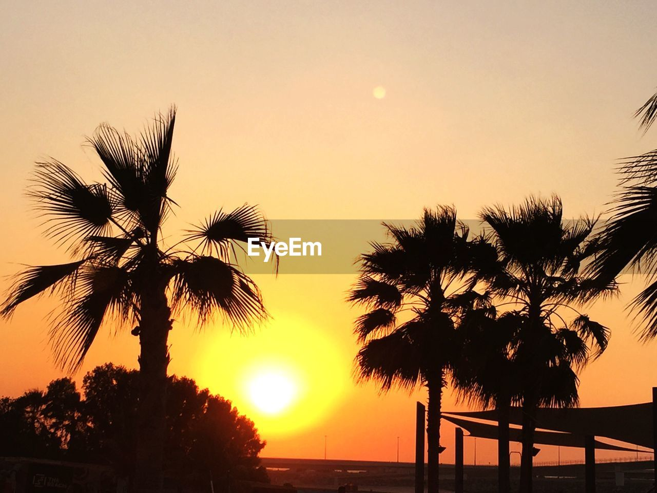 sunset, sky, palm tree, tropical climate, silhouette, plant, beauty in nature, tree, orange color, scenics - nature, sun, tranquil scene, nature, tranquility, growth, no people, water, outdoors, sunlight, coconut palm tree, tropical tree, palm leaf