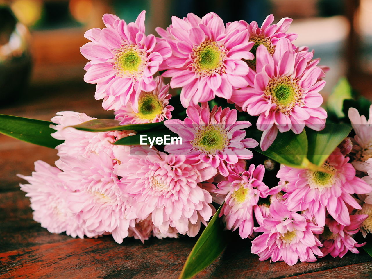flower, beauty in nature, petal, freshness, nature, flower head, fragility, no people, close-up, table, pink color, indoors, day