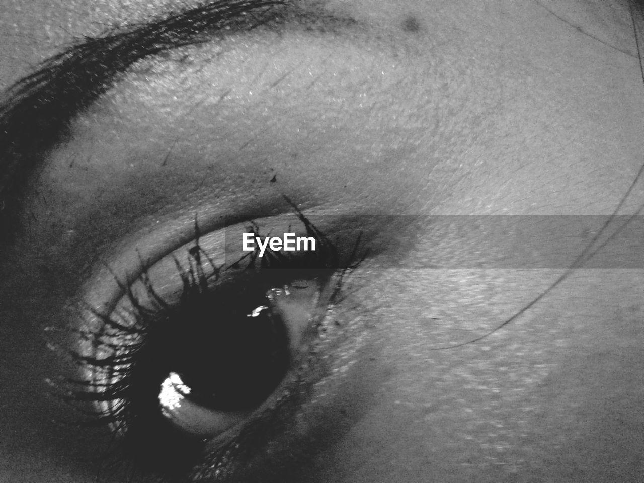 human body part, human eye, one person, real people, sensory perception, eyelash, eyesight, close-up, human skin, eyeball, outdoors, day, people