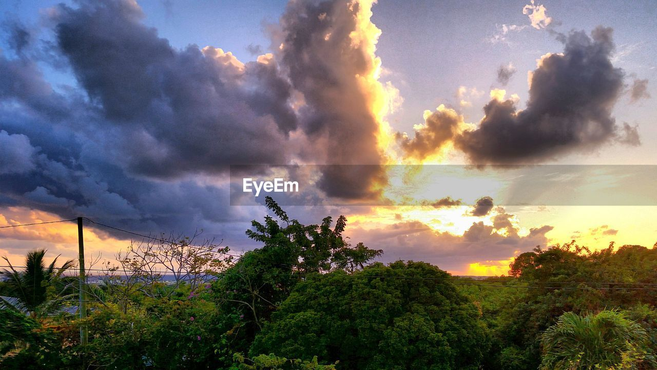 sky, tree, cloud - sky, beauty in nature, sunset, nature, scenics, dramatic sky, tranquil scene, no people, tranquility, outdoors, landscape, growth, day