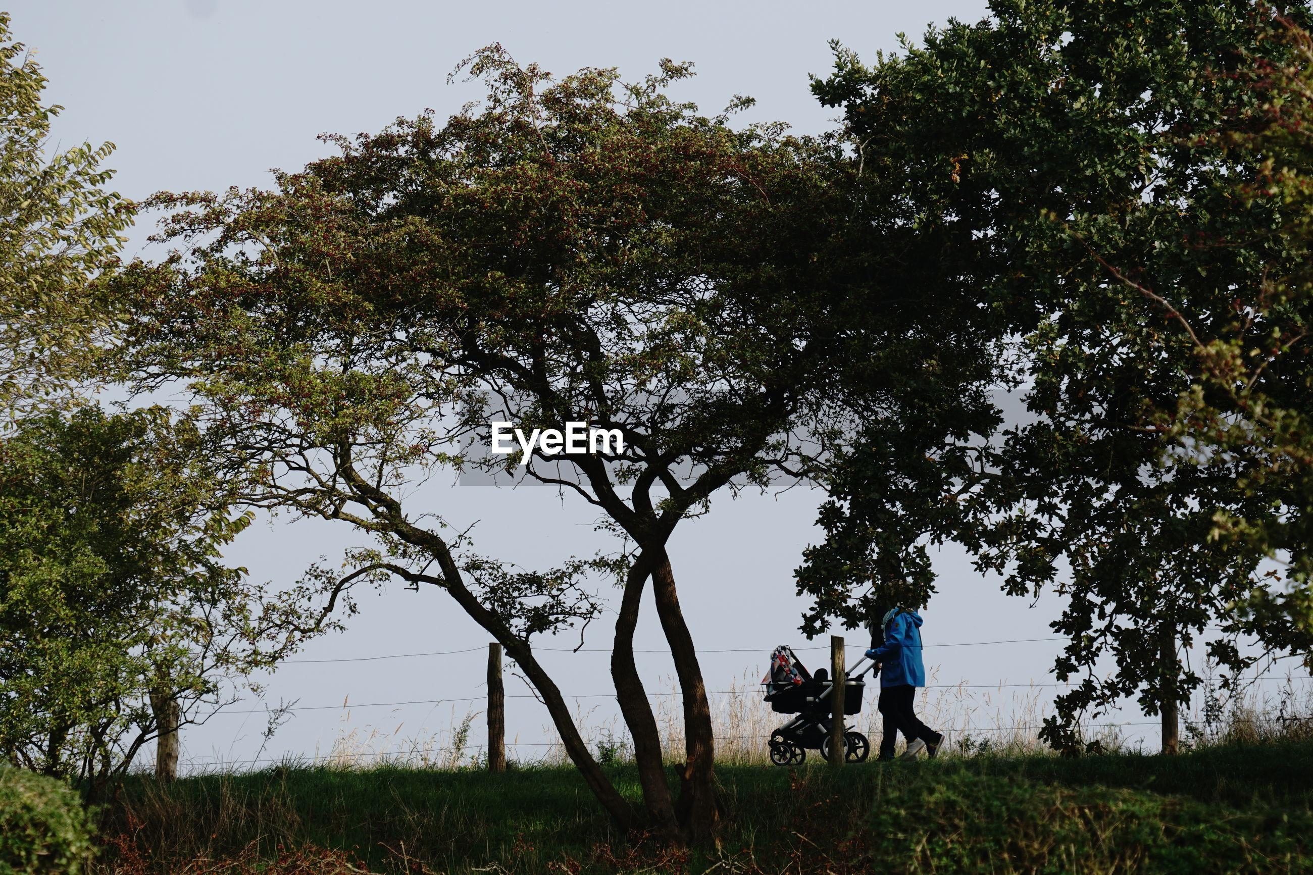 PEOPLE ON FIELD AGAINST TREES