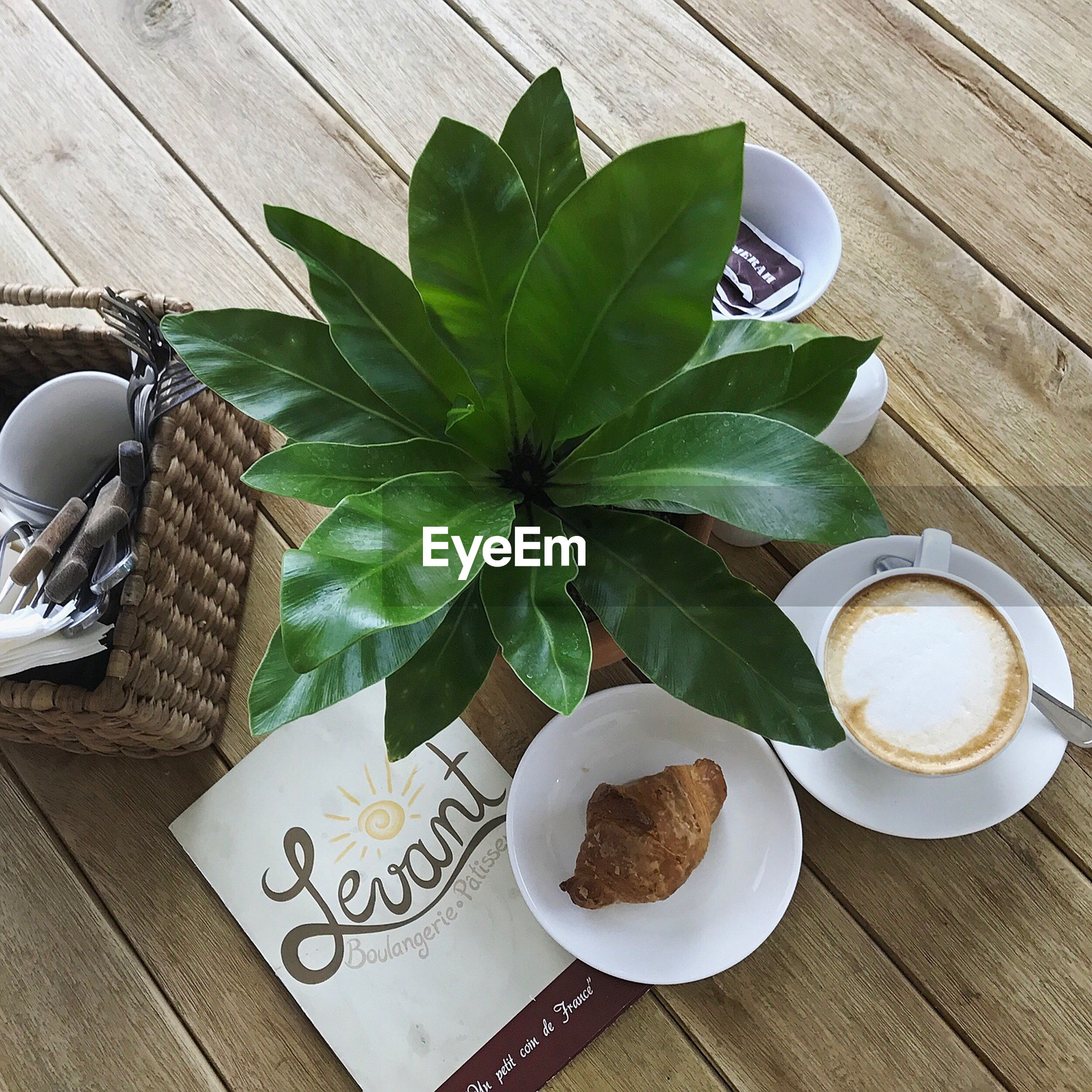 table, coffee cup, coffee - drink, food and drink, drink, high angle view, leaf, freshness, plate, refreshment, breakfast, indoors, saucer, wood - material, no people, directly above, food, cappuccino, day, latte, frothy drink, sweet food, ready-to-eat, close-up, froth art