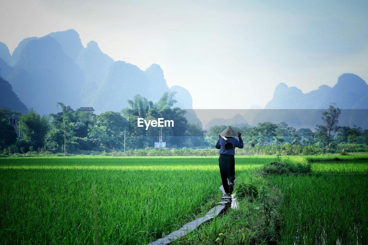 Farmer Walking On Concrete Path Amidst Grass Field