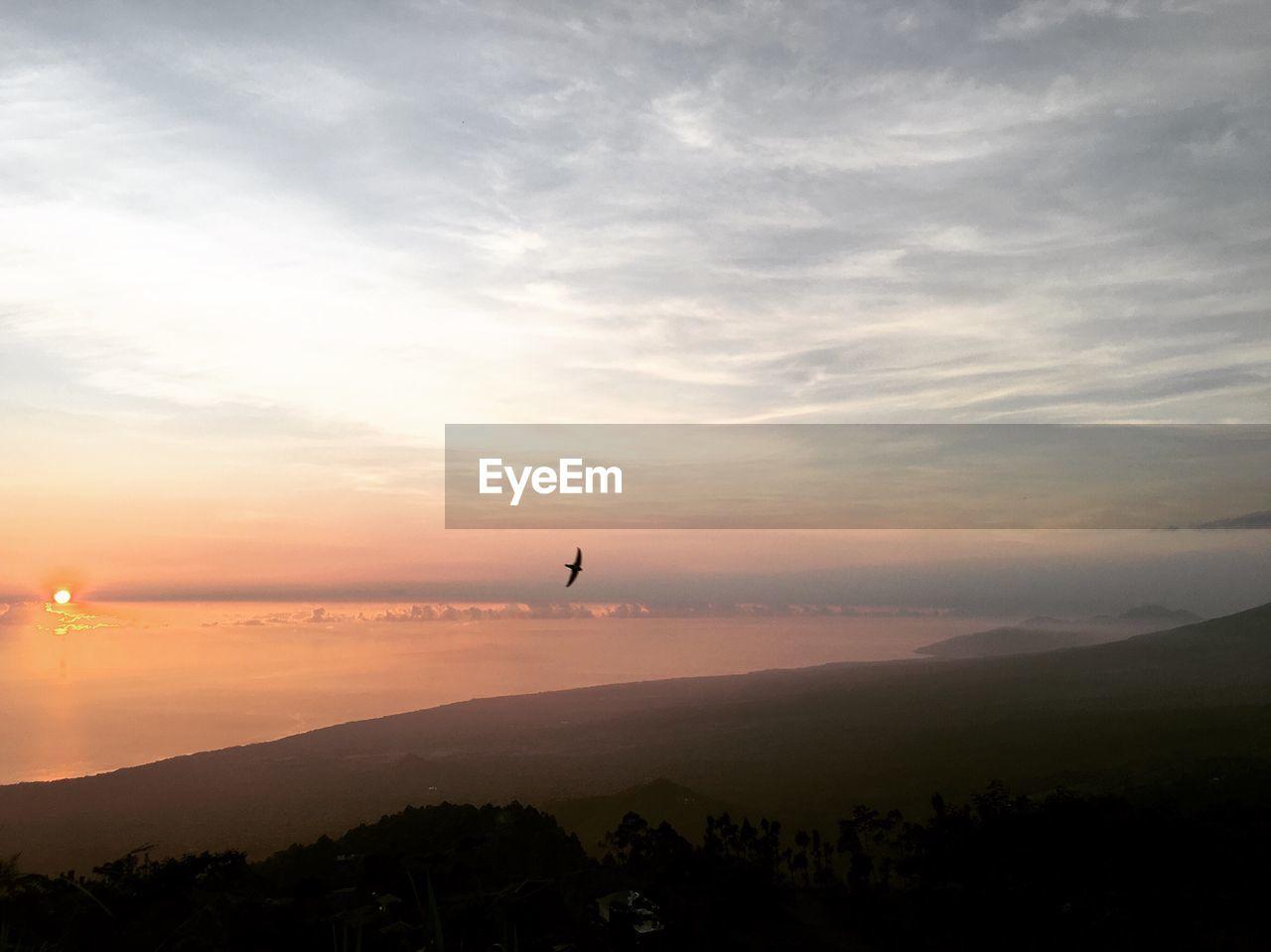 Silhouette Bird Flying Over Landscape Against Sky