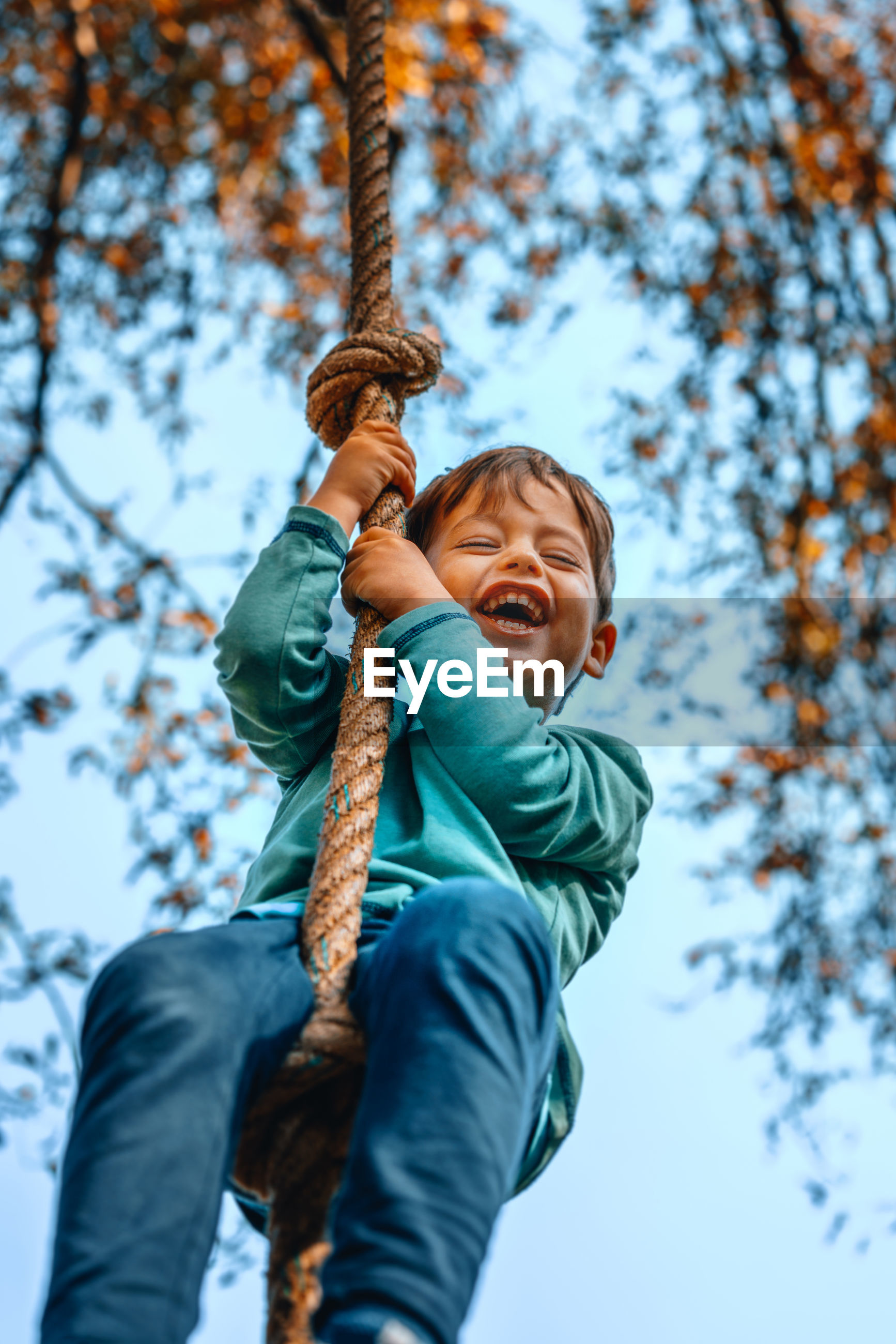 Low angle view of boy swinging against trees