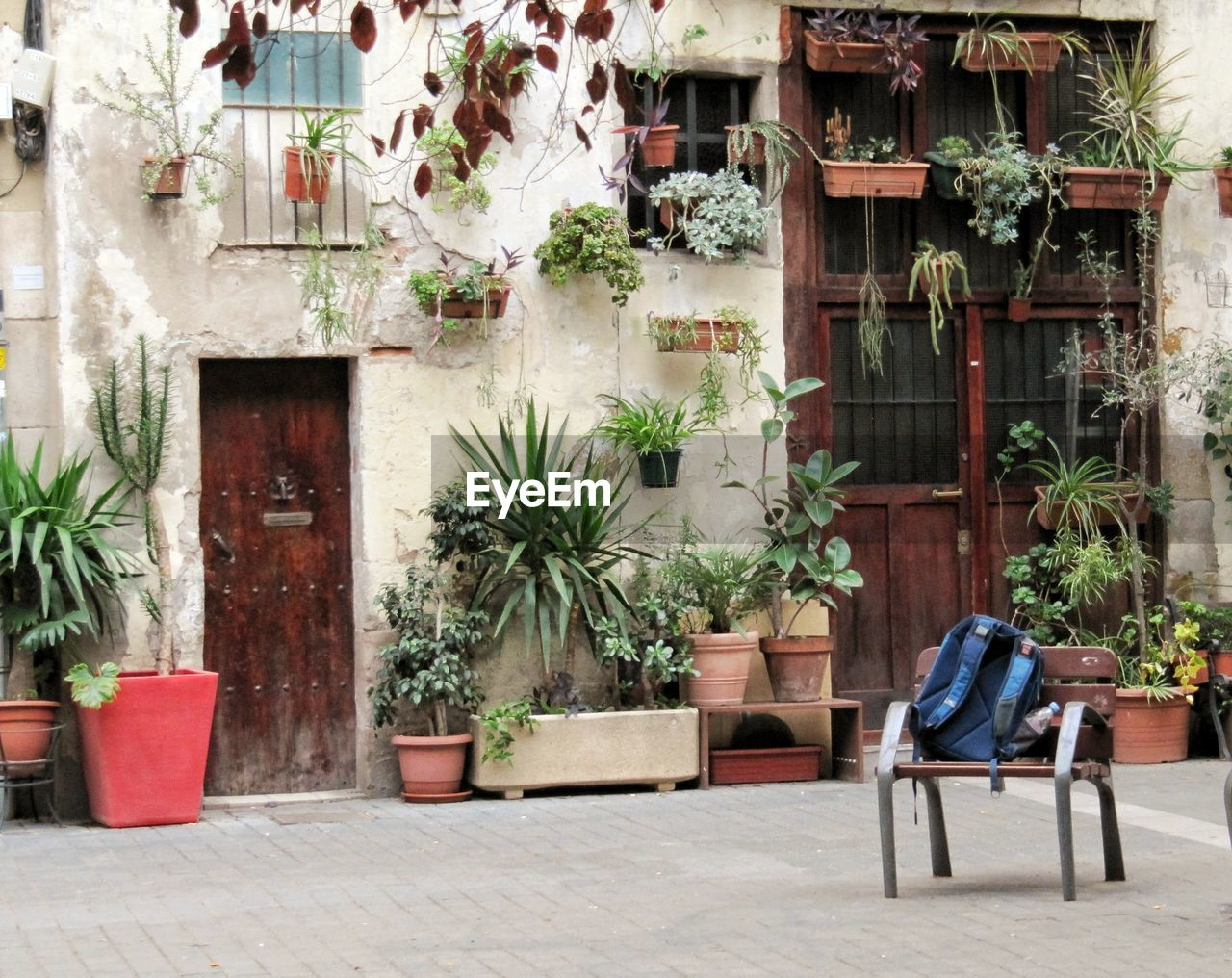 chair, potted plant, plant, armchair, architecture, tree, day, outdoors, seat, built structure, no people, building exterior
