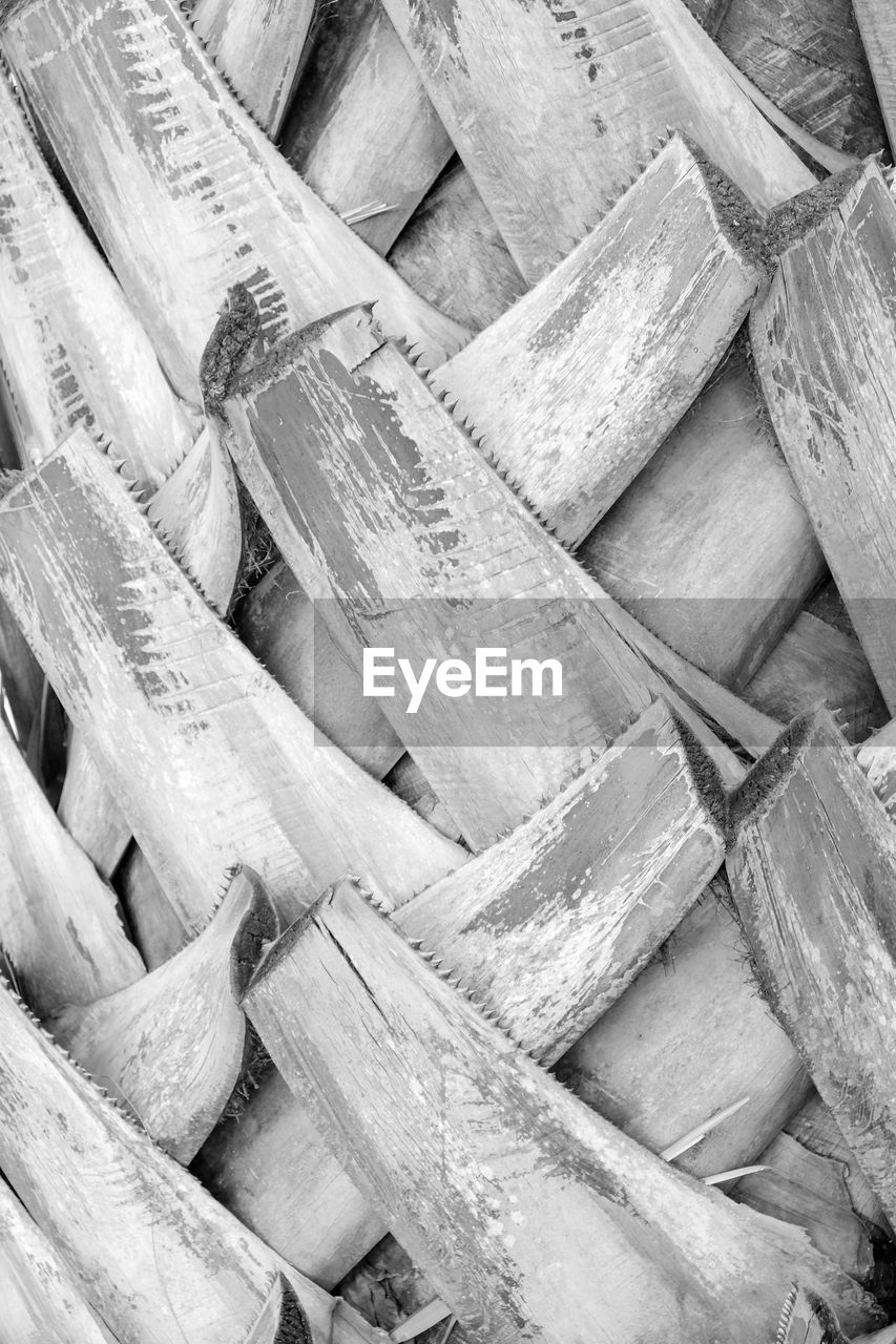 large group of objects, full frame, abundance, no people, backgrounds, stack, close-up, heap, wood - material, still life, high angle view, day, indoors, pattern, food, wellbeing, healthy eating, food and drink, wood, timber