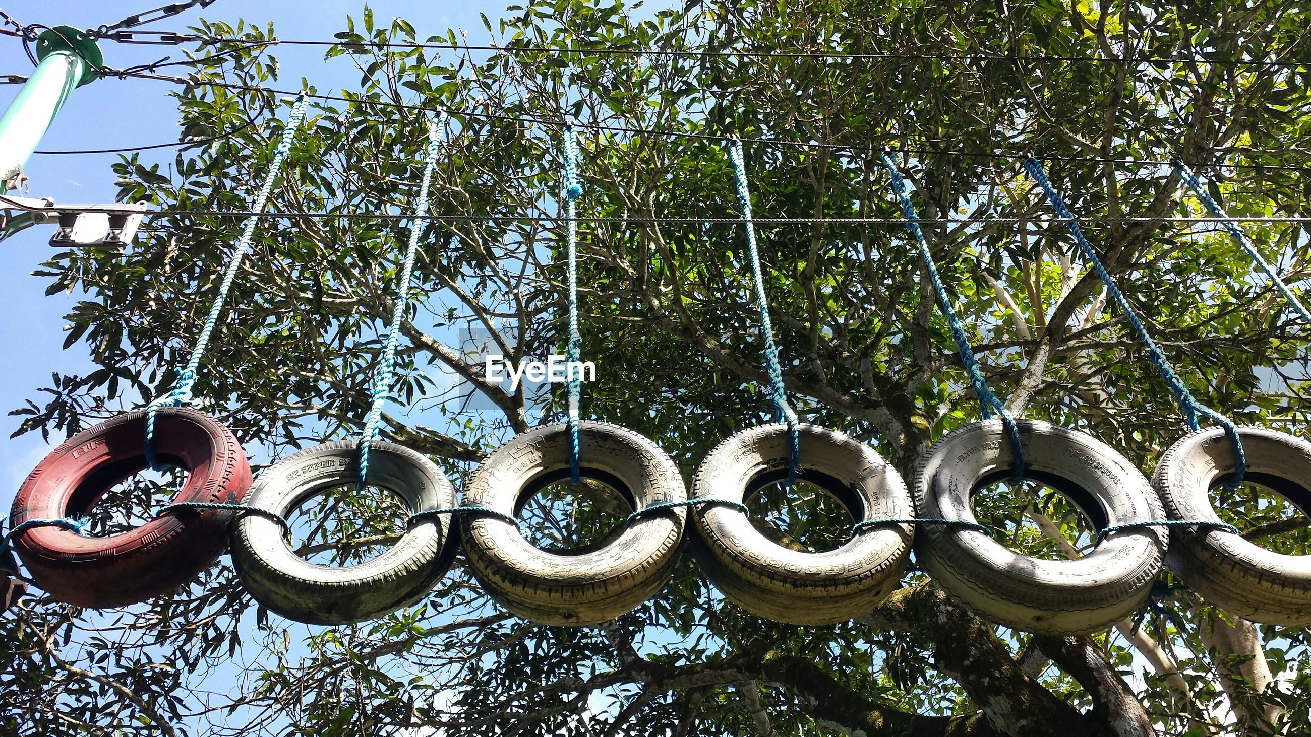 Low angle view of tires hanging against trees