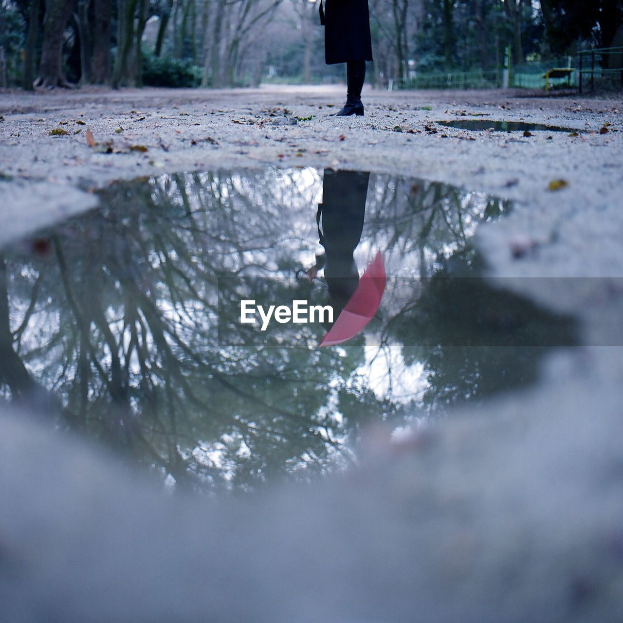 Woman Holding Umbrella Reflecting In Puddle