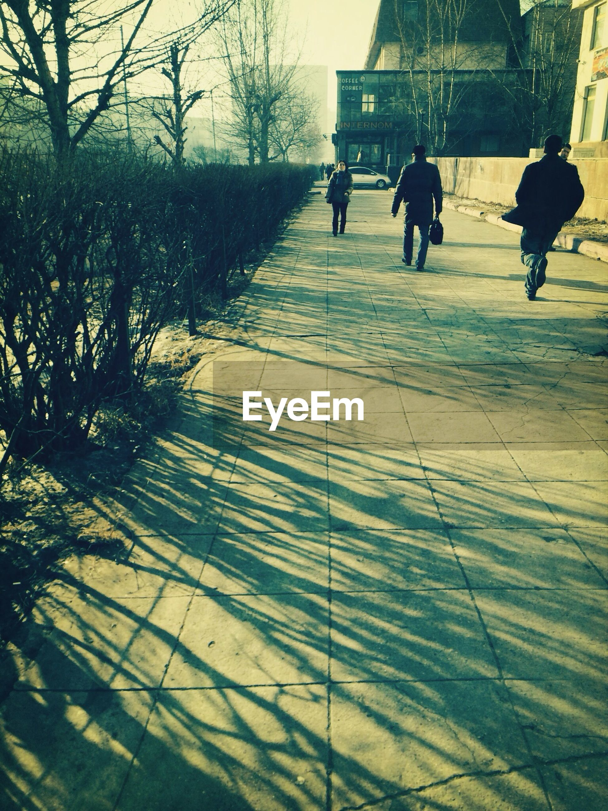 walking, men, lifestyles, full length, street, person, leisure activity, the way forward, shadow, rear view, tree, footpath, city, city life, sunlight, outdoors, day