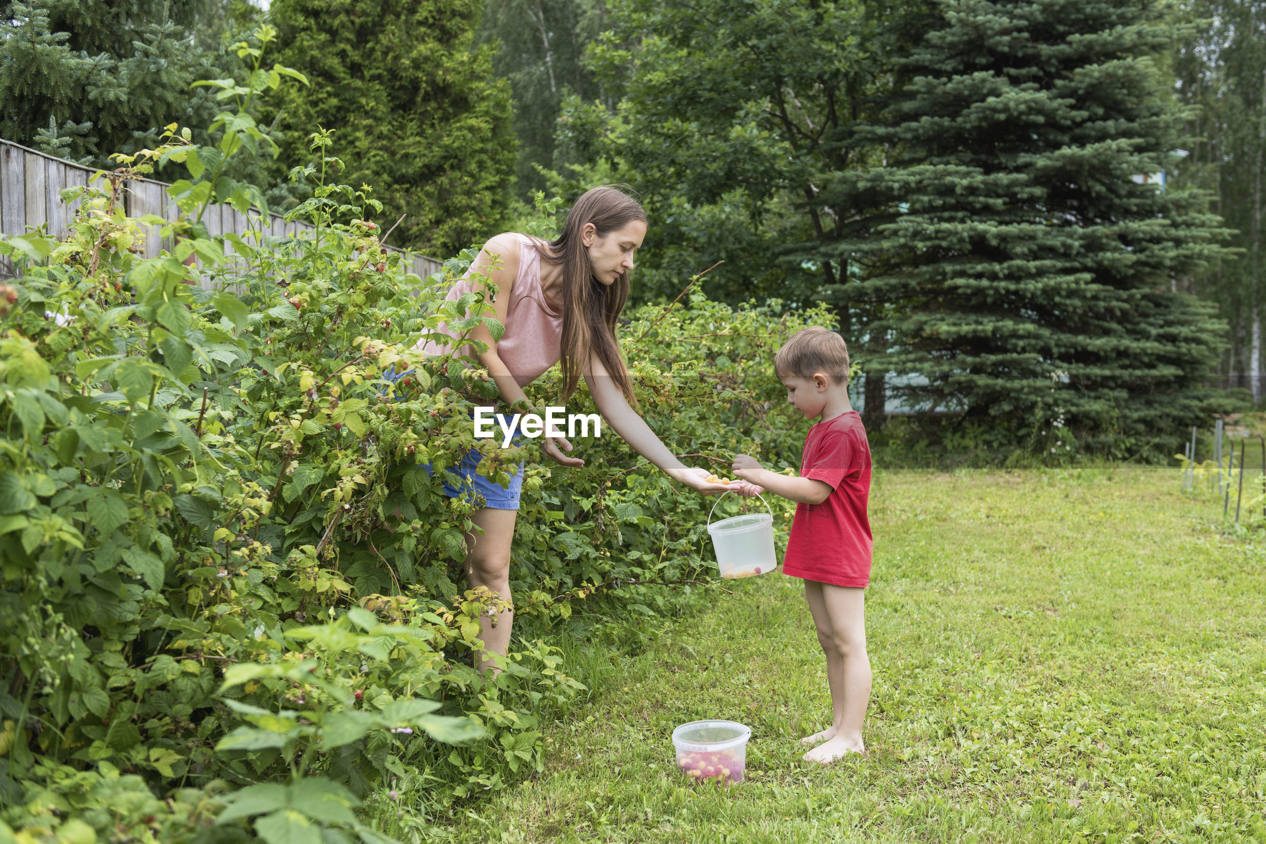 Mother and son collecting berries in yard