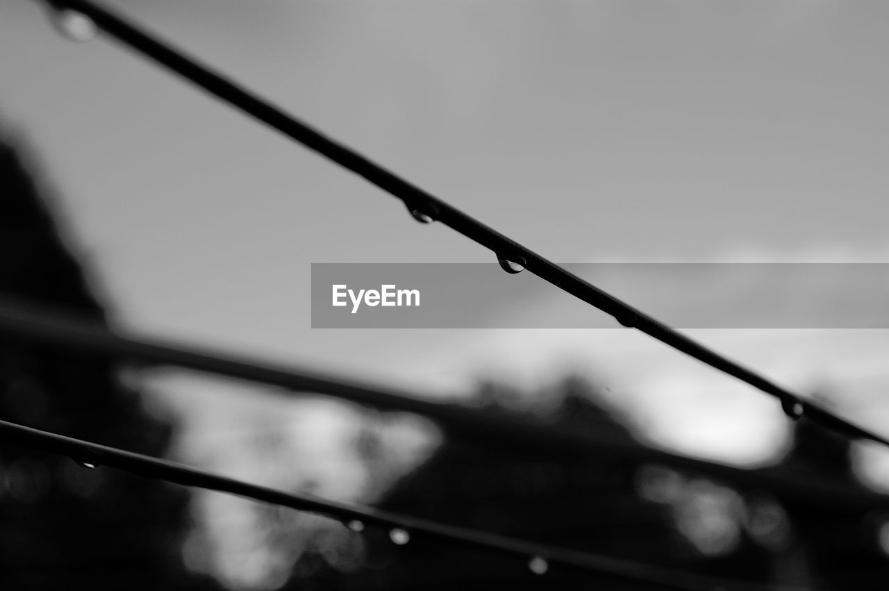 focus on foreground, no people, outdoors, barbed wire, day, close-up, sky, cable, nature