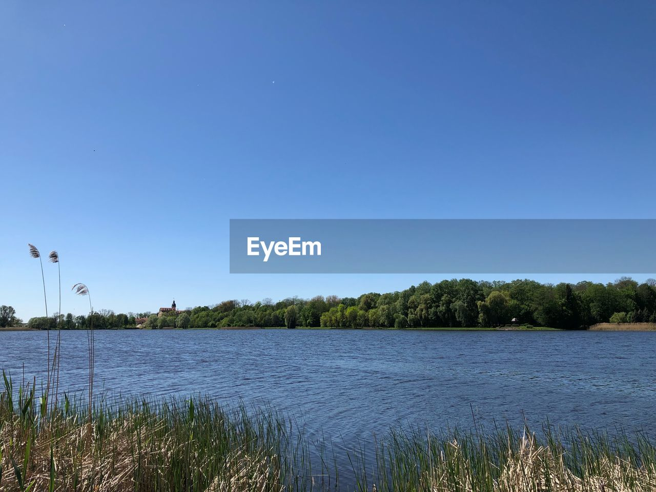 sky, water, plant, tree, clear sky, copy space, scenics - nature, nature, blue, lake, beauty in nature, no people, tranquility, day, tranquil scene, outdoors, non-urban scene, grass