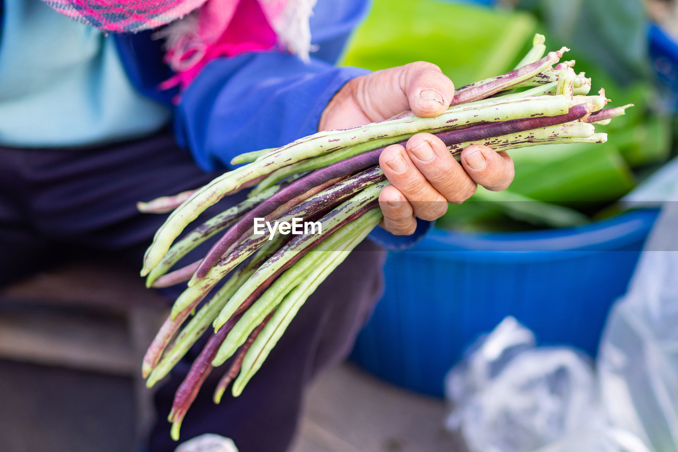A man holding a long beans.