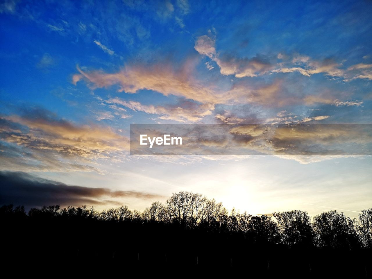 sky, cloud - sky, tranquility, tranquil scene, beauty in nature, scenics - nature, tree, sunset, silhouette, plant, no people, environment, landscape, nature, non-urban scene, land, idyllic, outdoors, field, sunlight