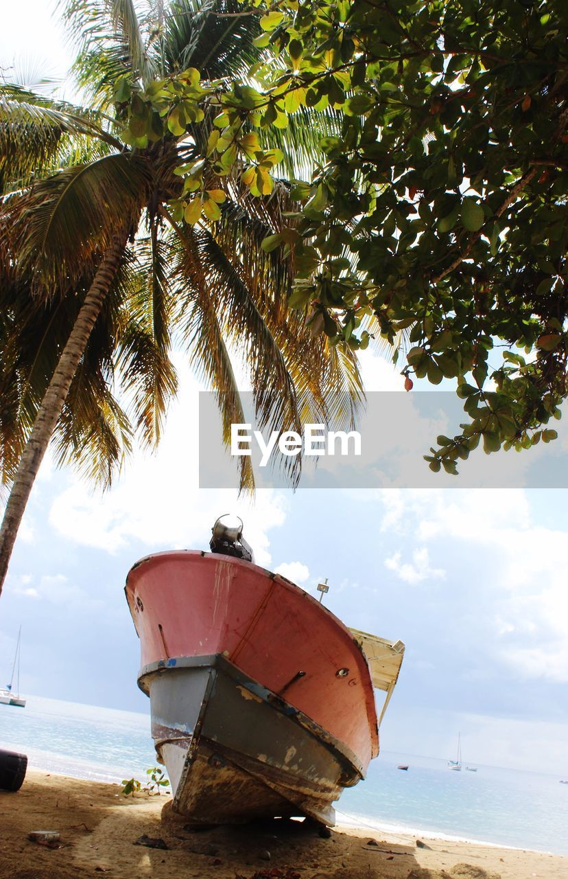 nautical vessel, boat, transportation, mode of transport, nature, beach, moored, sky, abandoned, tree, sea, no people, water, day, outdoors, beauty in nature, scenics