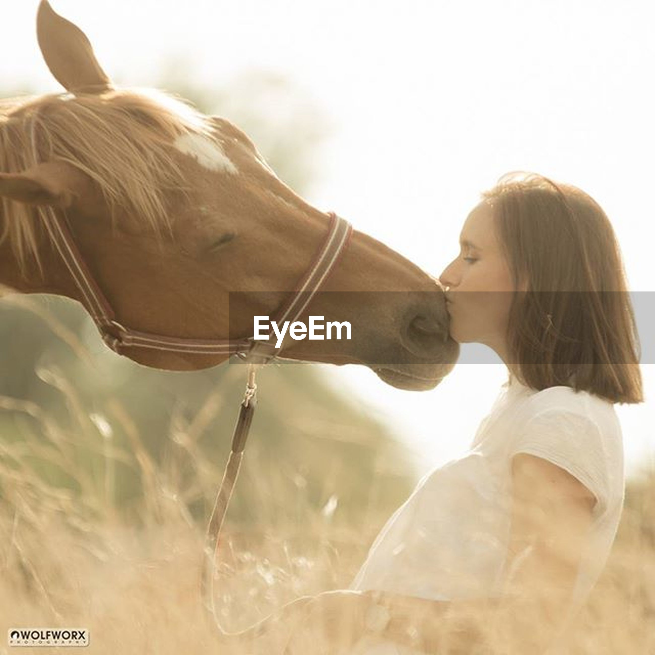 lifestyles, leisure activity, young adult, horse, side view, standing, casual clothing, young women, rear view, close-up, focus on foreground, people, sky, long hair, clear sky, day, outdoors