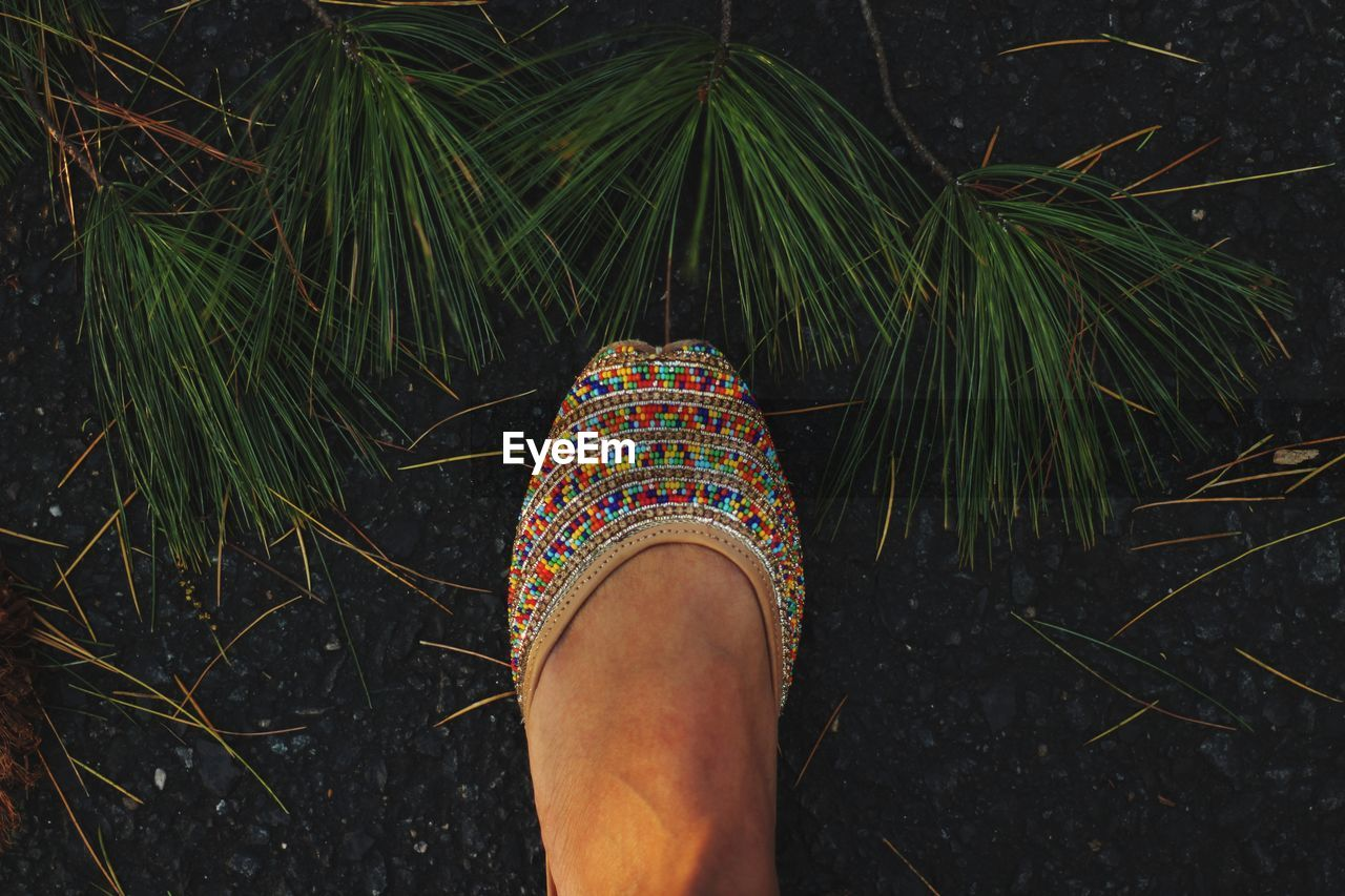 Low section of woman wearing multi colored shoe standing on ground
