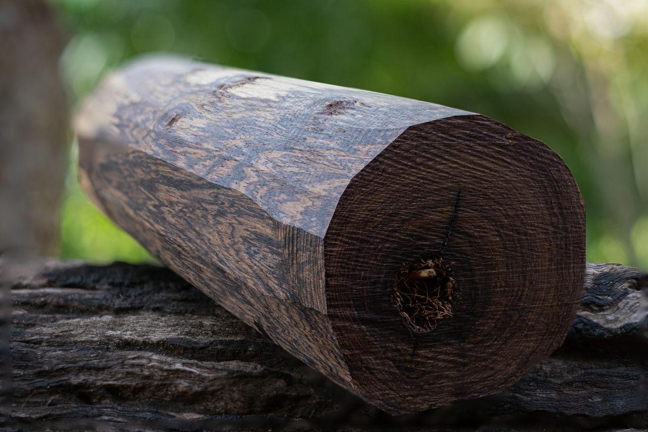 Logs woods of burma black wood on blurred background