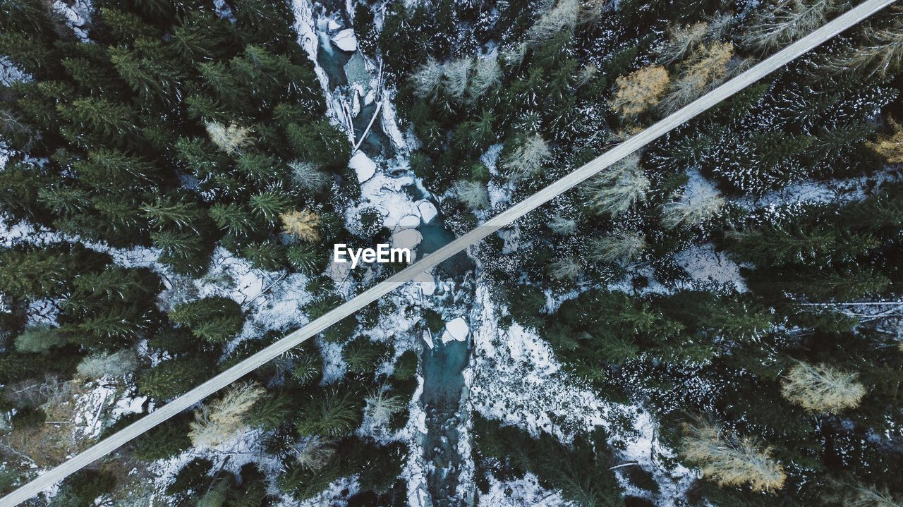High Angle View Of Stream Amidst Trees During Winter