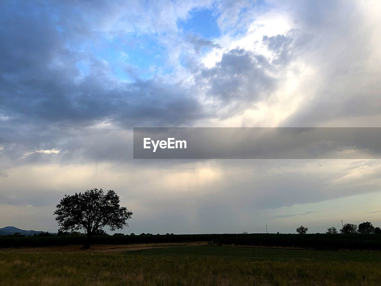 sky, cloud - sky, beauty in nature, landscape, tree, field, tranquility, scenics - nature, tranquil scene, plant, environment, land, nature, no people, non-urban scene, silhouette, growth, outdoors, sunset, grass