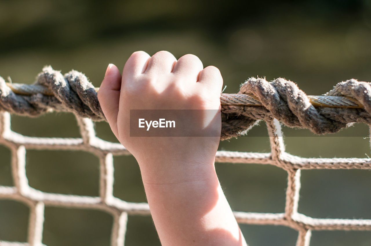 Cropped image of hand holding net