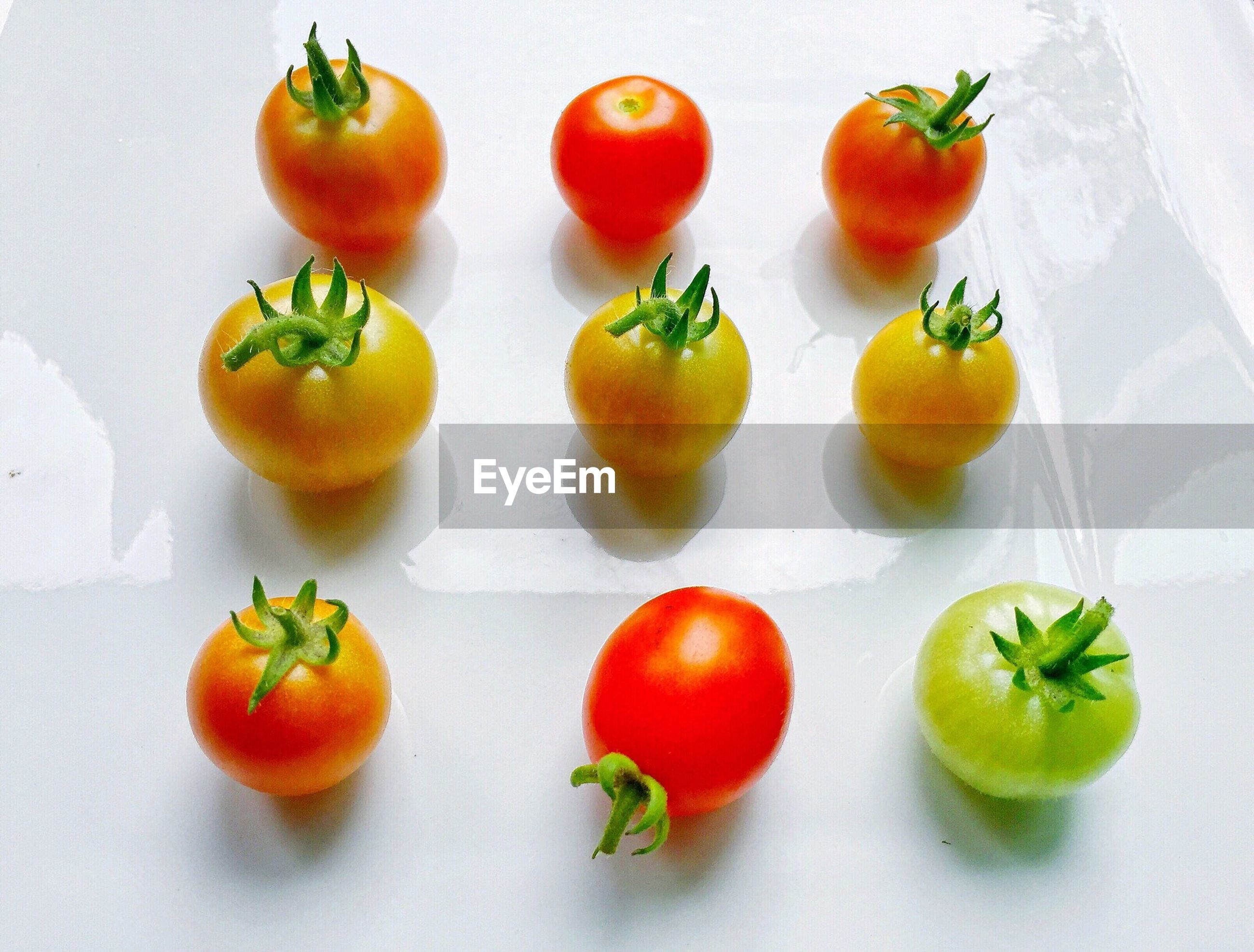 High angle view of tomatoes against white background