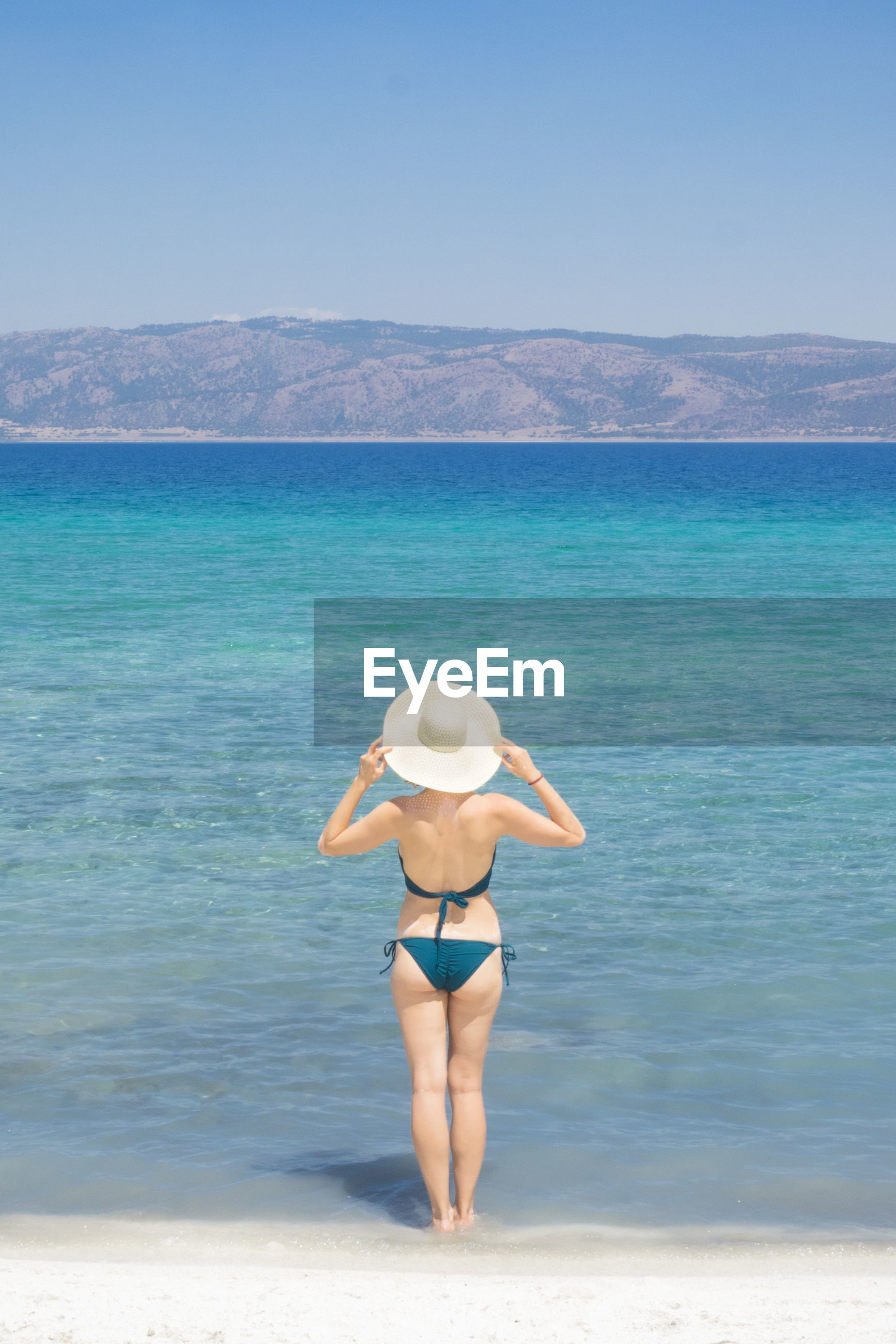 Rear view of sensuous woman wearing bikini while standing on shore at beach