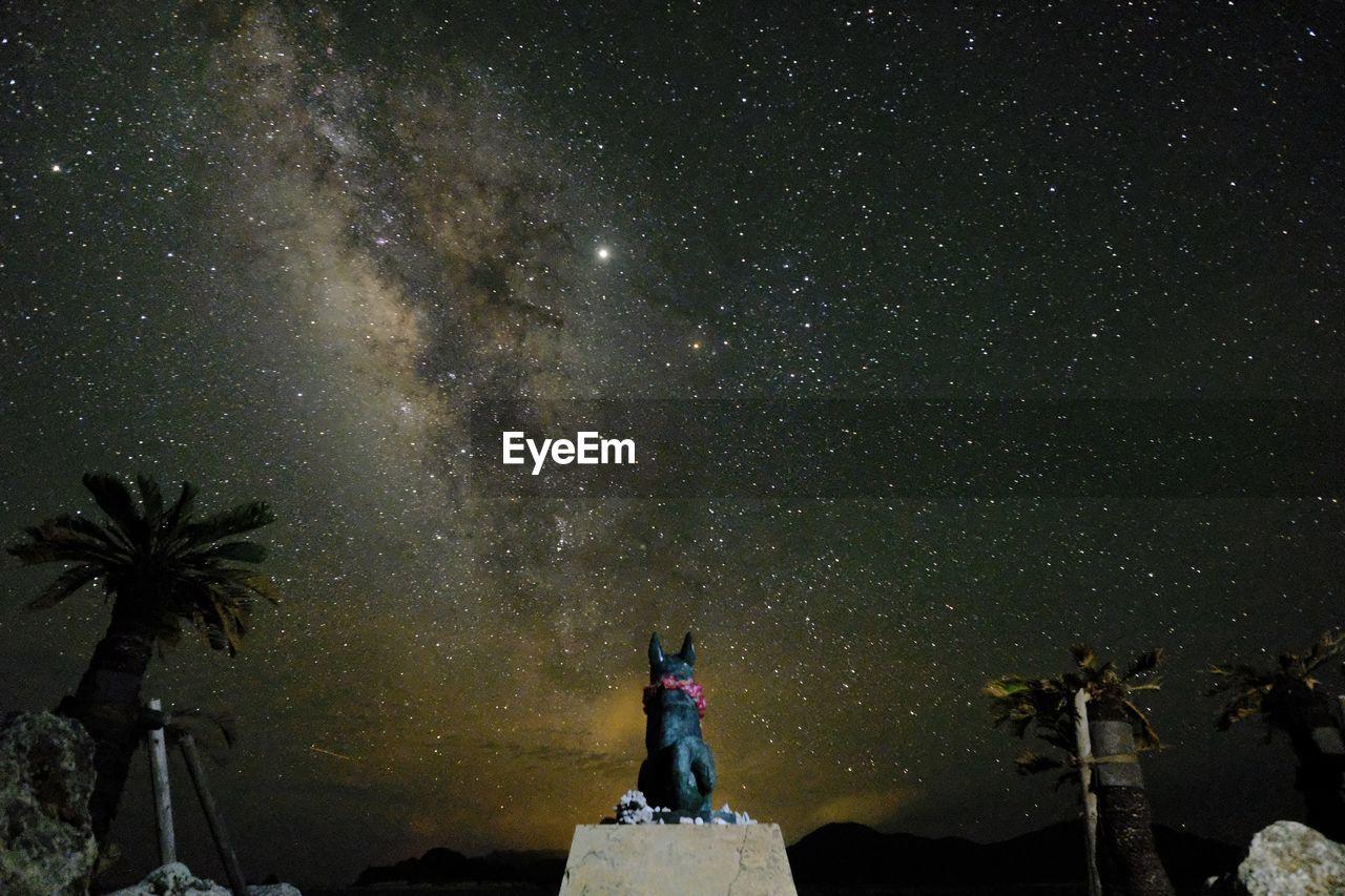 Milky way over dog statue