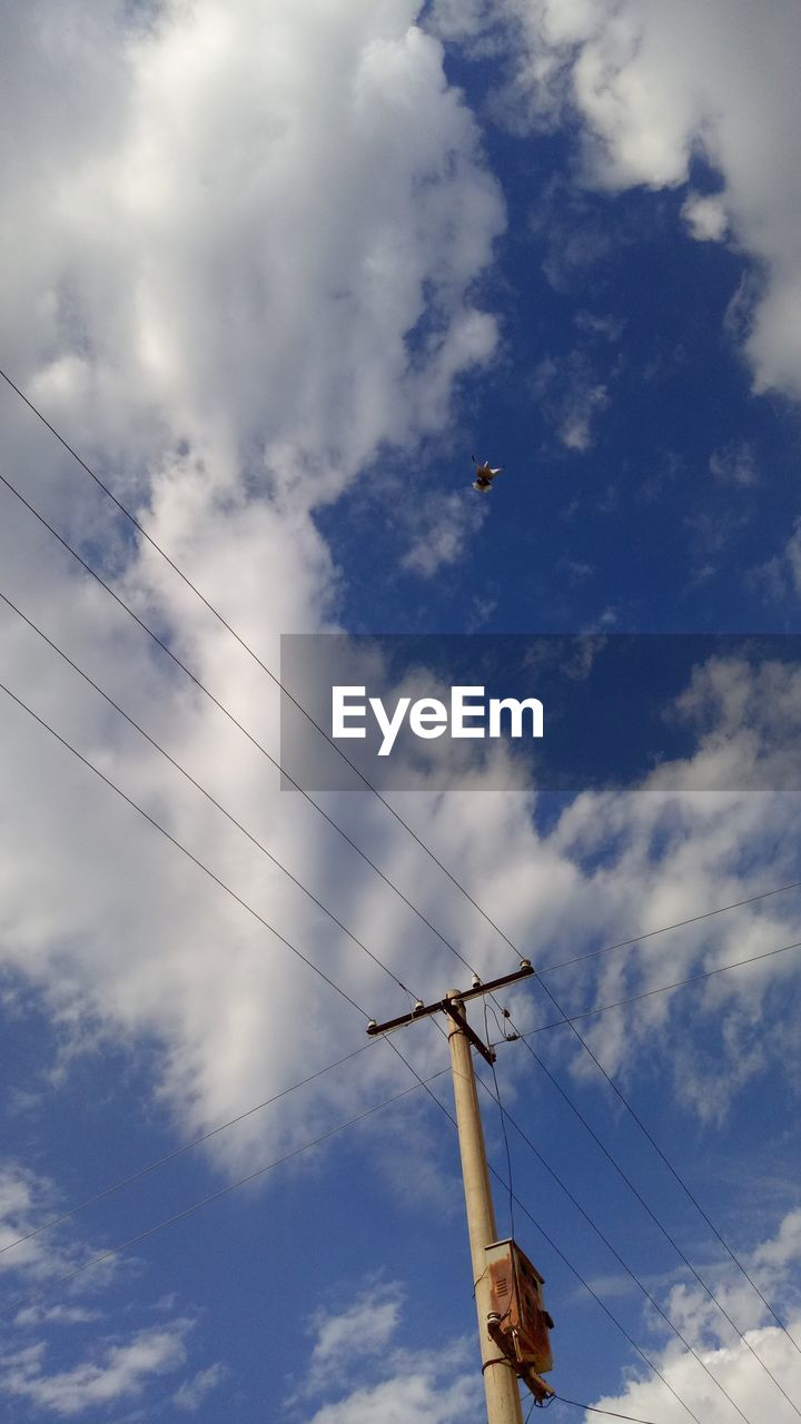 cloud - sky, low angle view, sky, day, nature, no people, power line, electricity, technology, cable, flying, fuel and power generation, outdoors, power supply, built structure, electricity pylon, metal, tall - high, bird, vertebrate