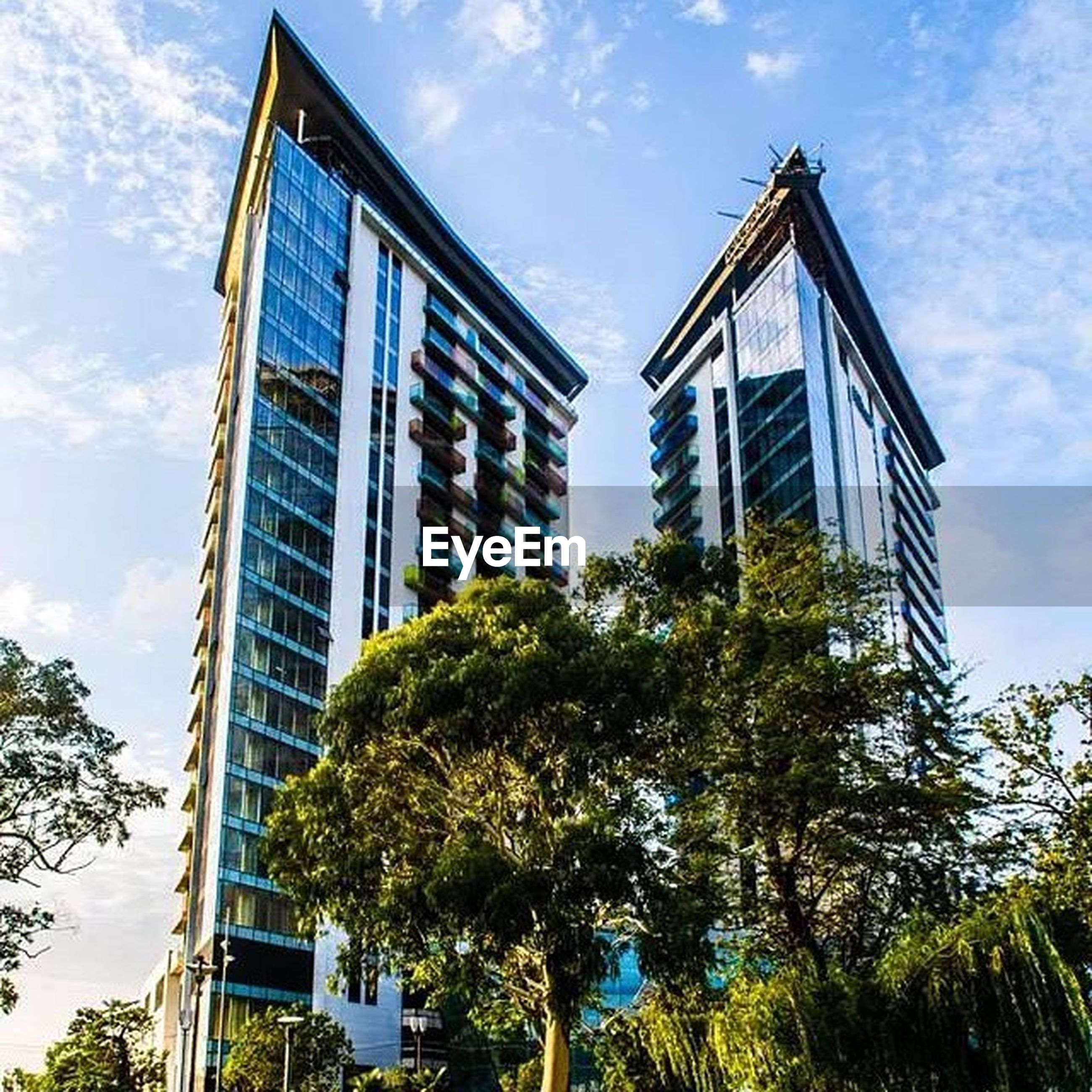 architecture, building exterior, built structure, low angle view, sky, tree, blue, cloud - sky, cloud, building, window, day, sunlight, glass - material, outdoors, city, growth, no people, residential building, residential structure