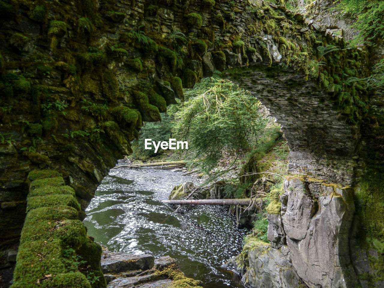 waterfall, nature, no people, river, rock - object, scenics, water, beauty in nature, motion, outdoors, moss, forest, day, tree