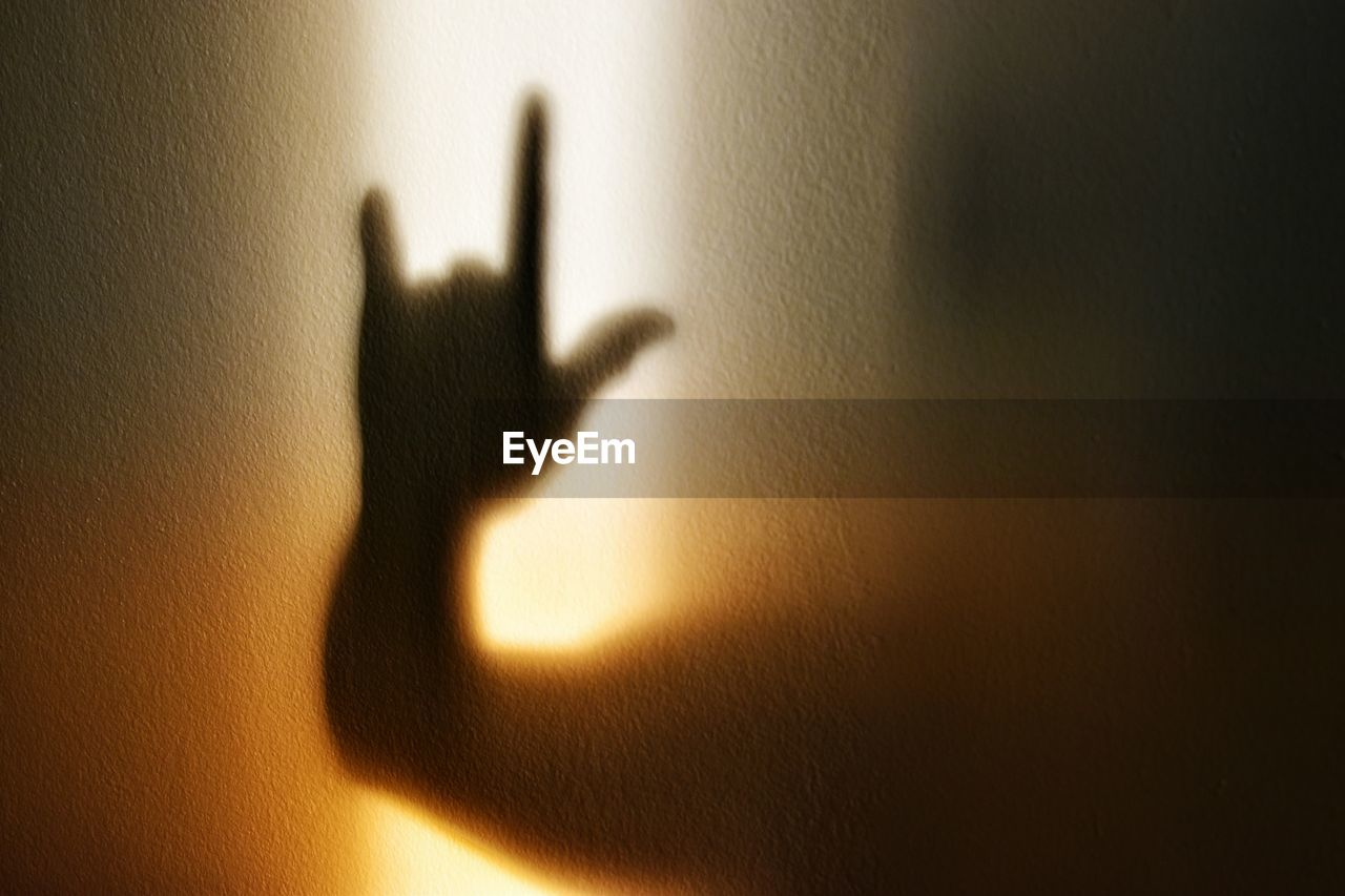 Shadow Of Person Gesturing Horn Sign Seen On Wall
