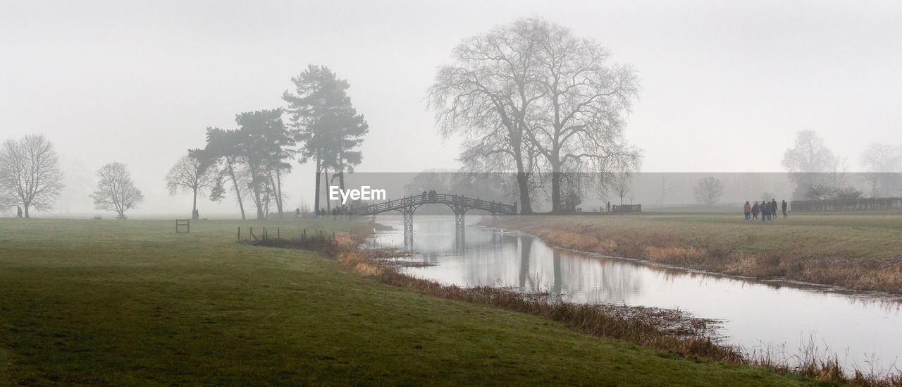 tree, plant, fog, water, tranquil scene, tranquility, grass, sky, lake, nature, scenics - nature, beauty in nature, landscape, environment, field, non-urban scene, land, reflection, outdoors, no people, hazy