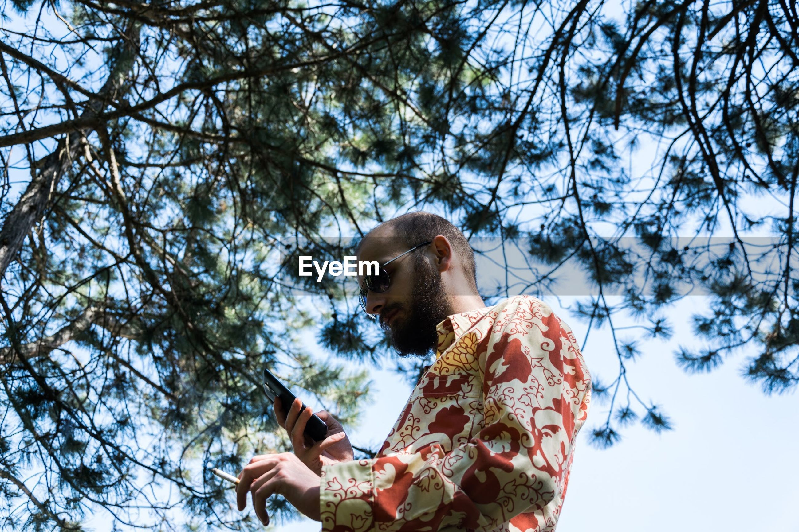 Low angle view of man using phone against branches