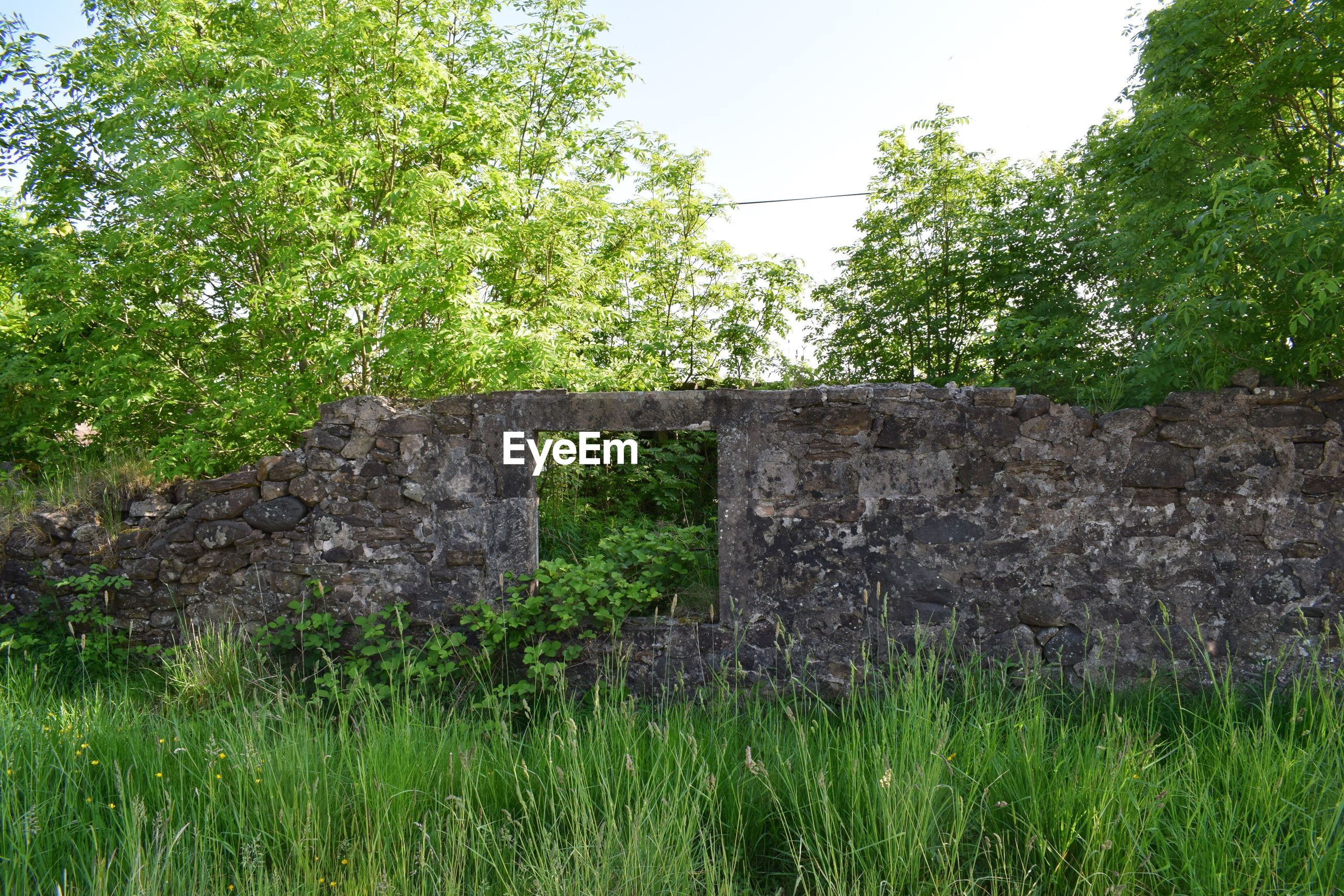 Abandoned wall on grassy field