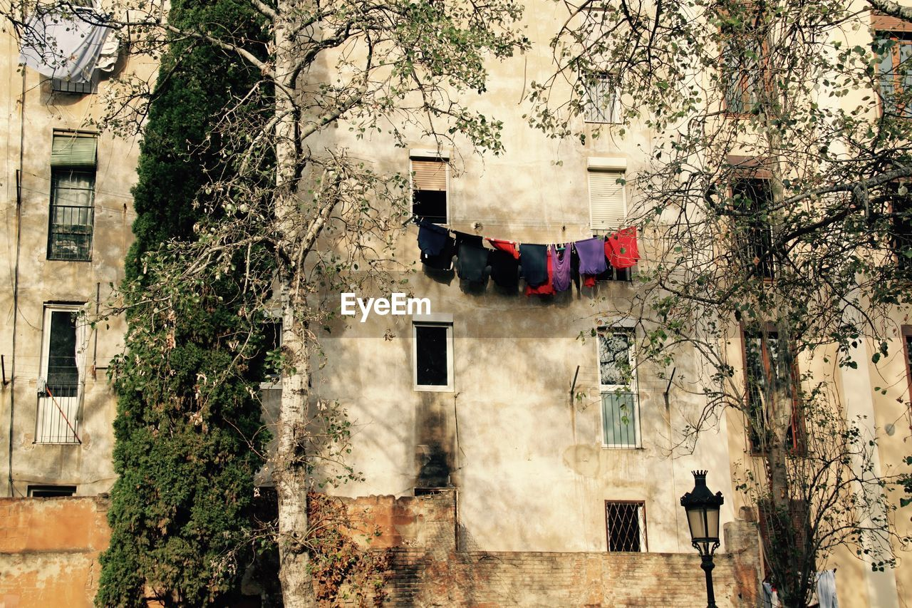 building exterior, tree, architecture, plant, built structure, hanging, building, laundry, day, drying, nature, clothing, no people, residential district, outdoors, window, clothesline, growth, city, textile, apartment