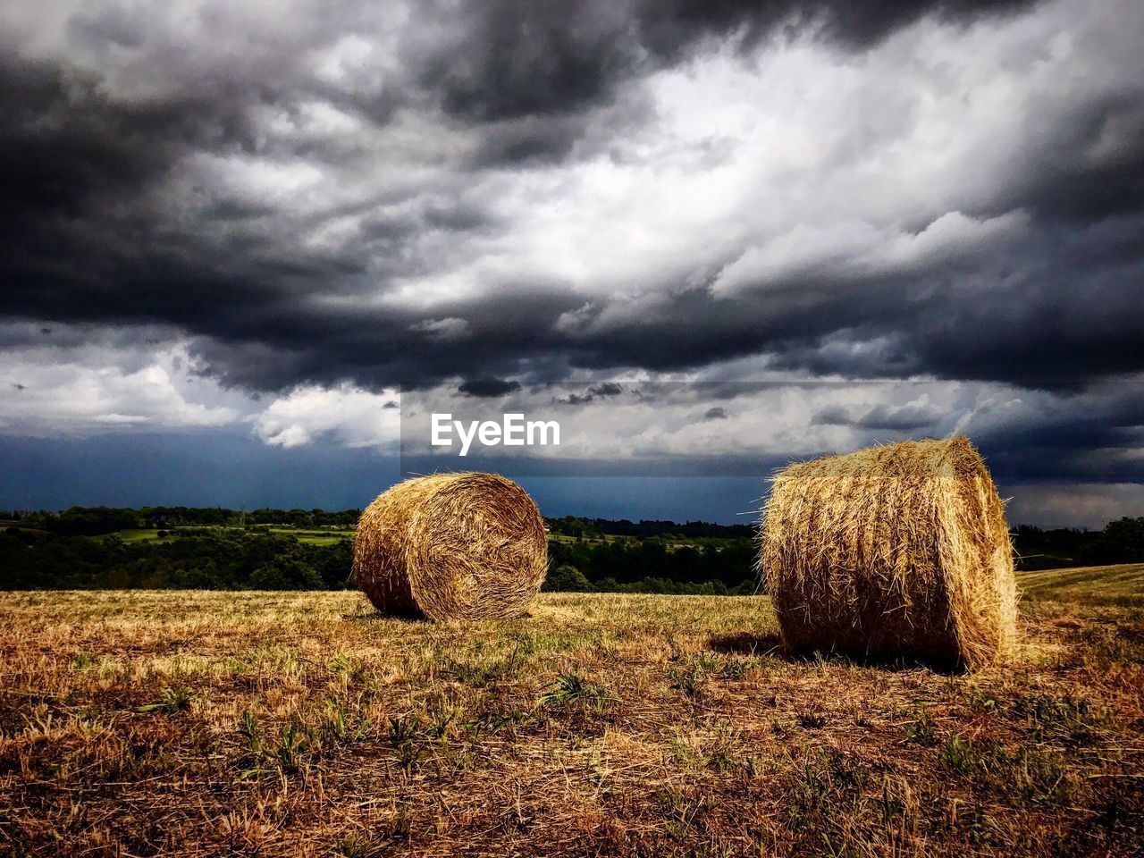 bale, hay, field, agriculture, hay bale, sky, cloud - sky, tranquility, rural scene, harvesting, landscape, tranquil scene, outdoors, no people, day, haystack, nature, beauty in nature, scenics, storm cloud, grass