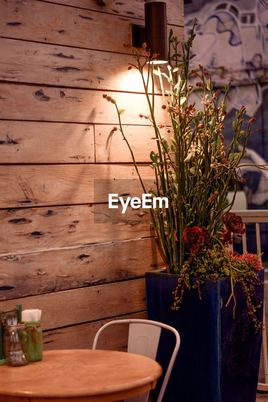 POTTED PLANTS ON TABLE BY WALL