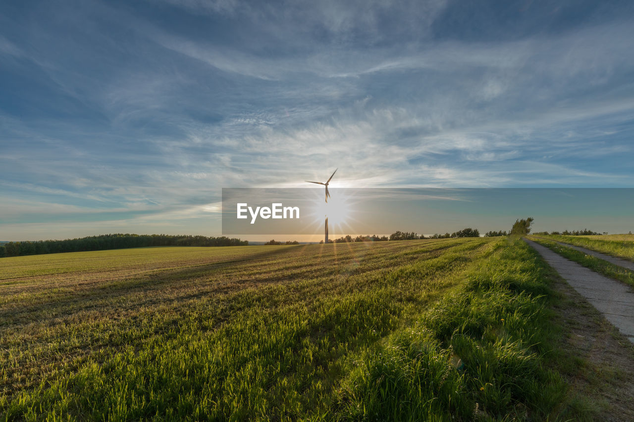 sky, field, landscape, beauty in nature, environment, scenics - nature, tranquility, tranquil scene, cloud - sky, land, agriculture, plant, rural scene, green color, sun, nature, sunlight, growth, grass, no people, outdoors, lens flare